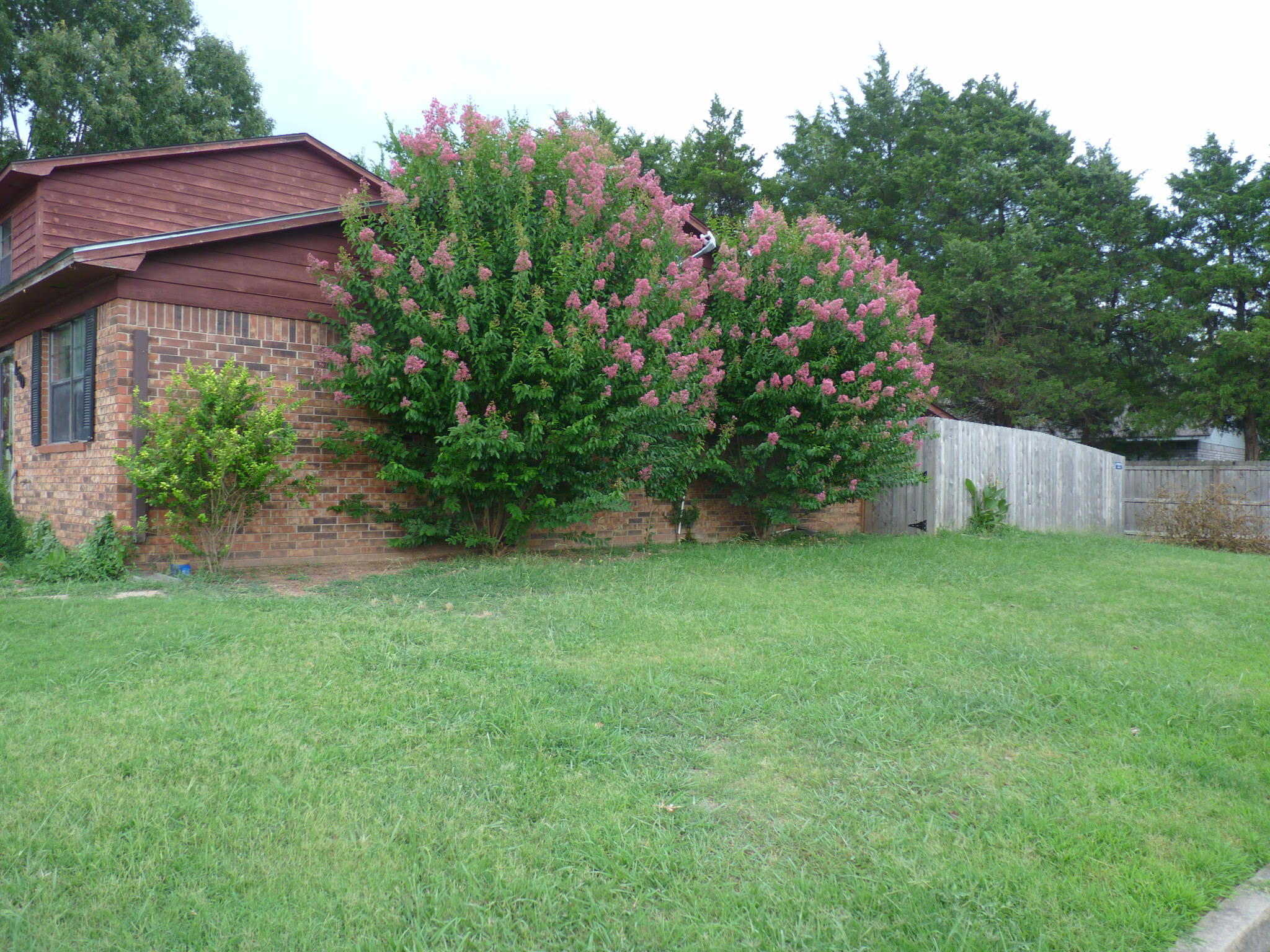 Large photo 2 of home for sale at 1500 University Drive, Russellville, AR