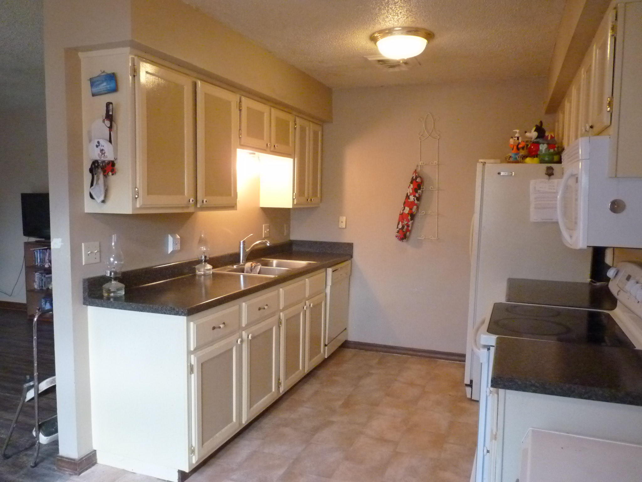 Large photo 3 of home for sale at 1500 University Drive, Russellville, AR