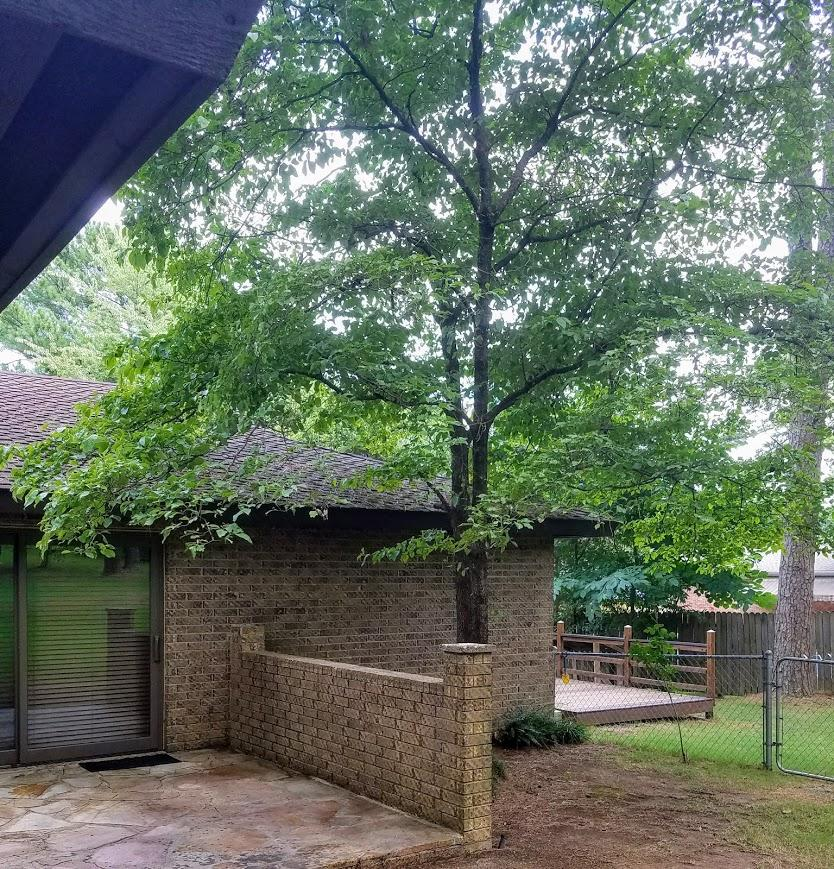 Large photo 9 of home for sale at 609 Dalewood Court, Russellville, AR