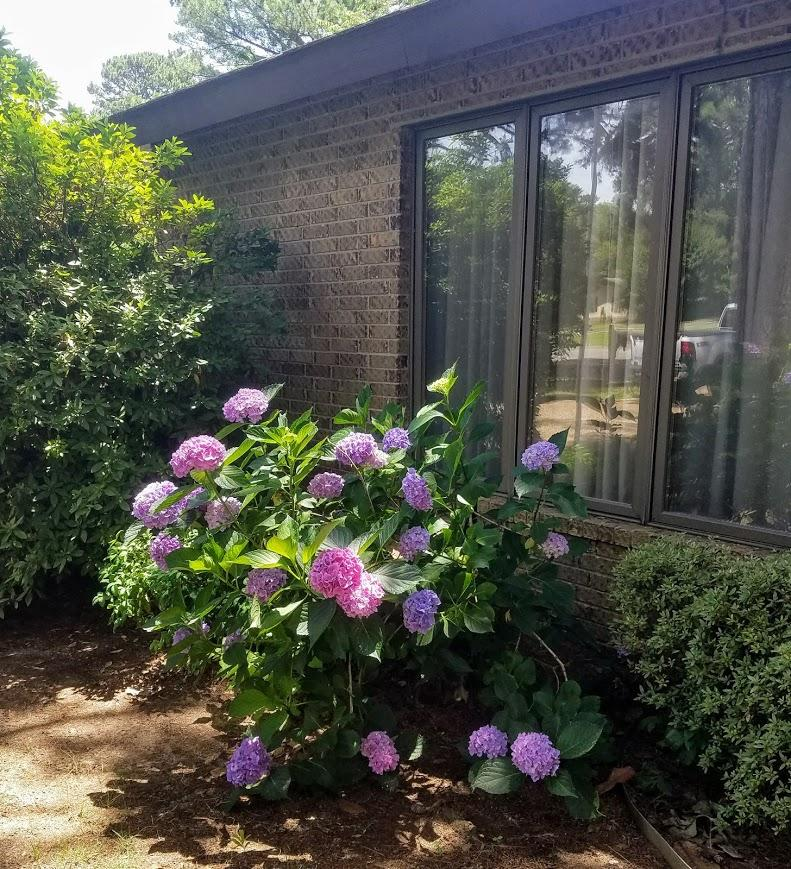 Large photo 12 of home for sale at 609 Dalewood Court, Russellville, AR