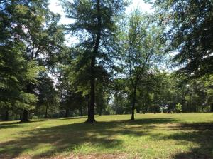 lots 11,18 PR 1597 South Bend, Knoxville, AR 72845