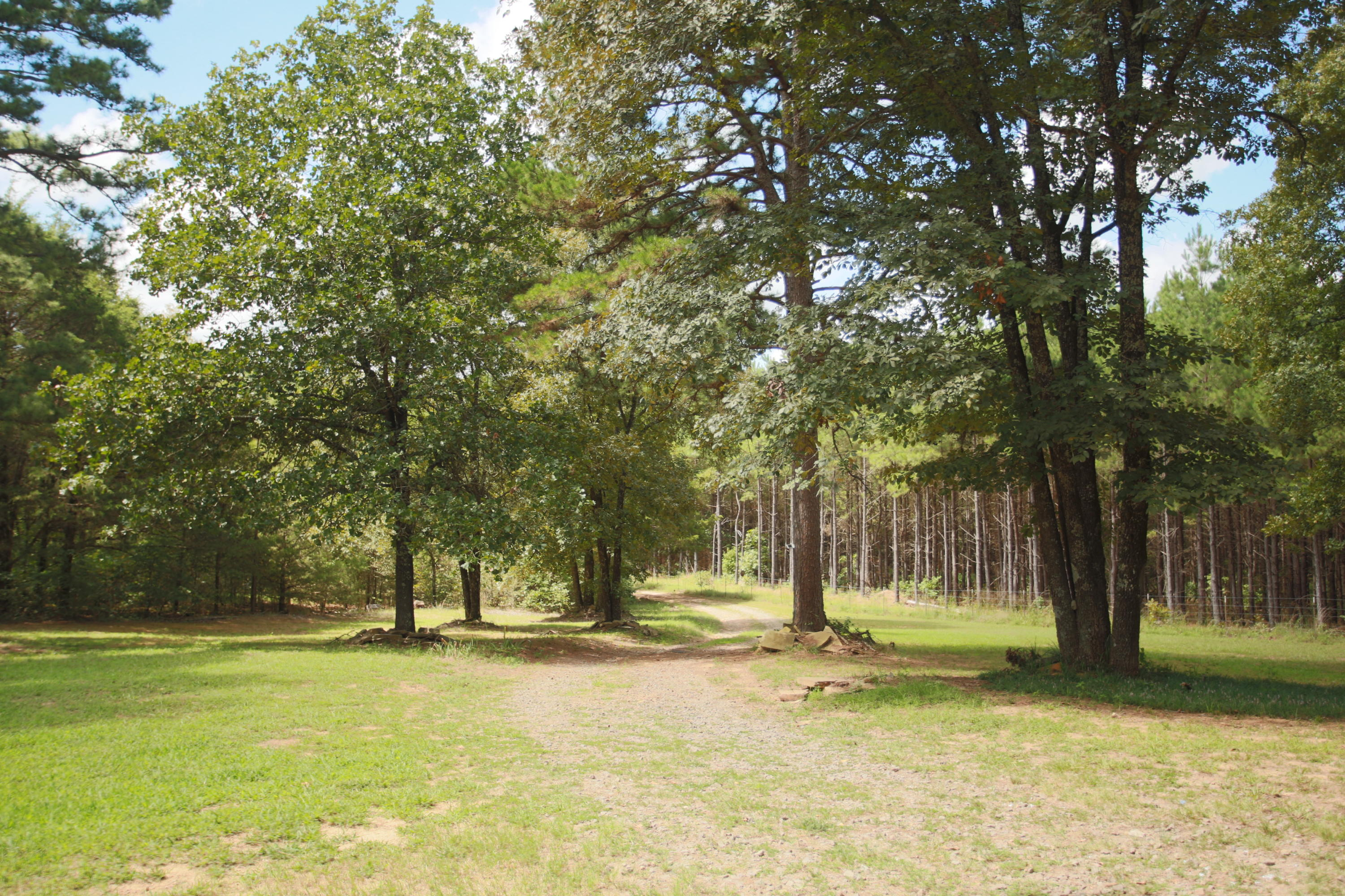 Large photo 24 of home for sale at 1314 CR 3020 , Hartman, AR