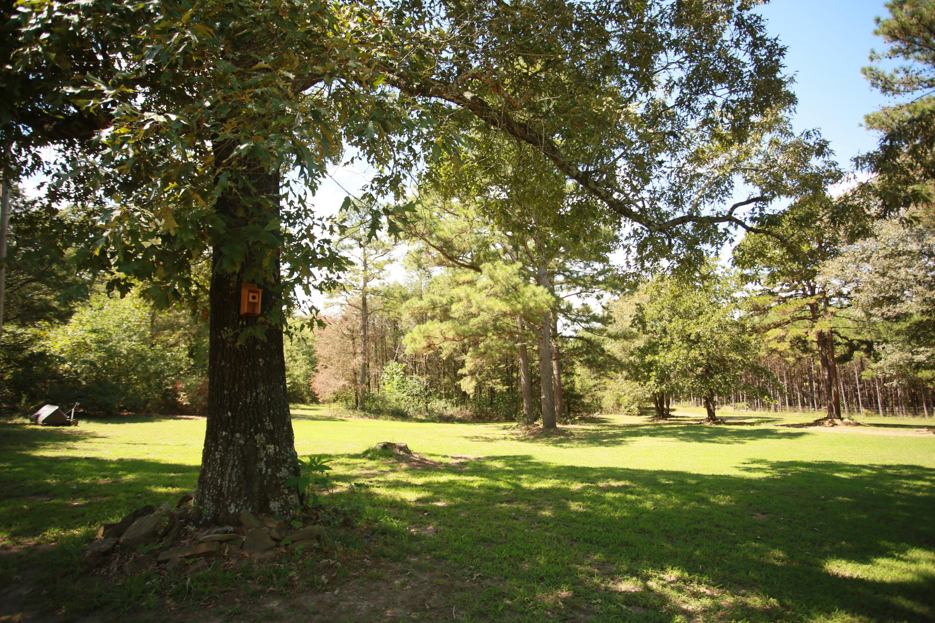Large photo 5 of home for sale at 1314 CR 3020 , Hartman, AR