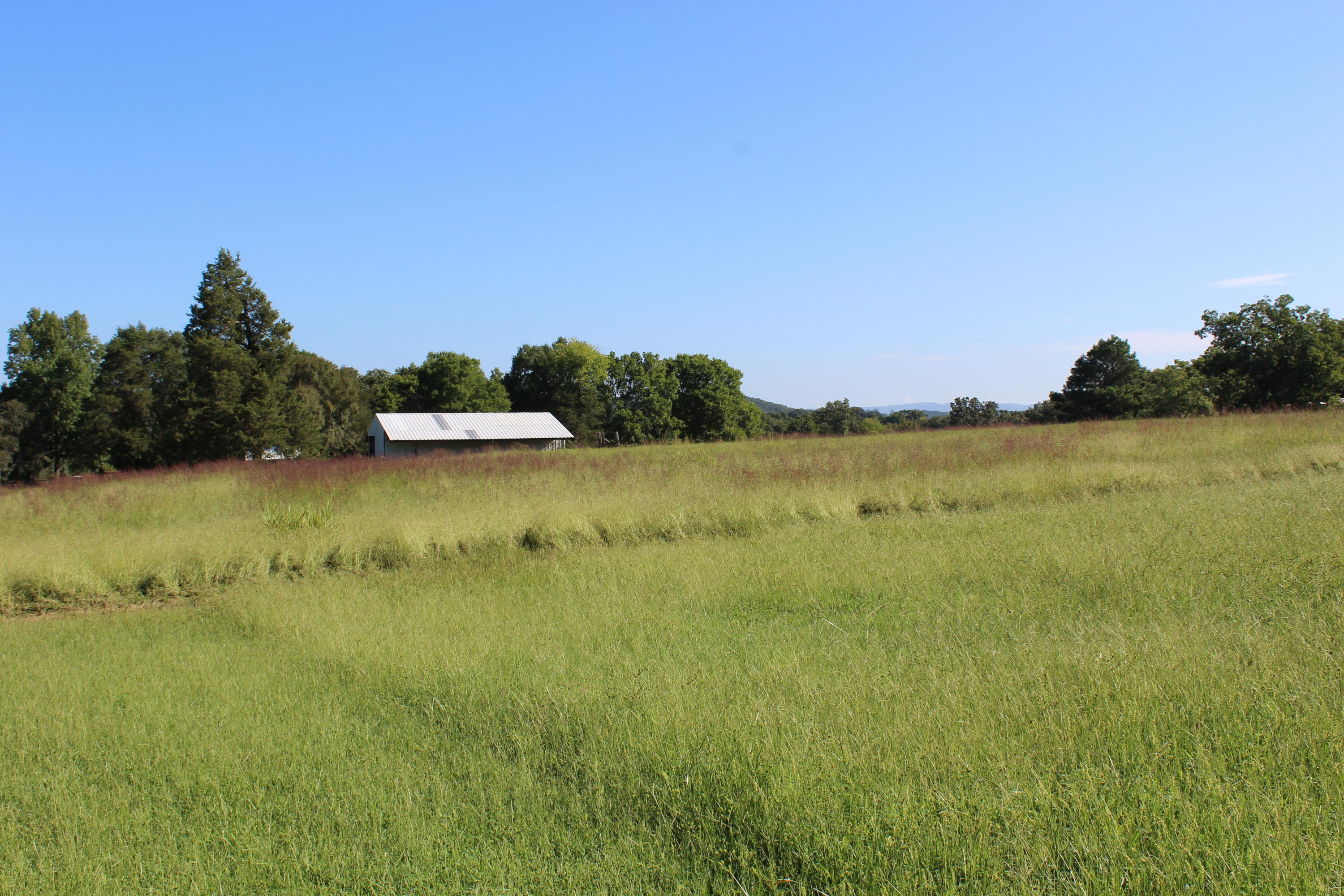 Large photo 69 of home for sale at 667 CR 2275 Road, Clarksville, AR
