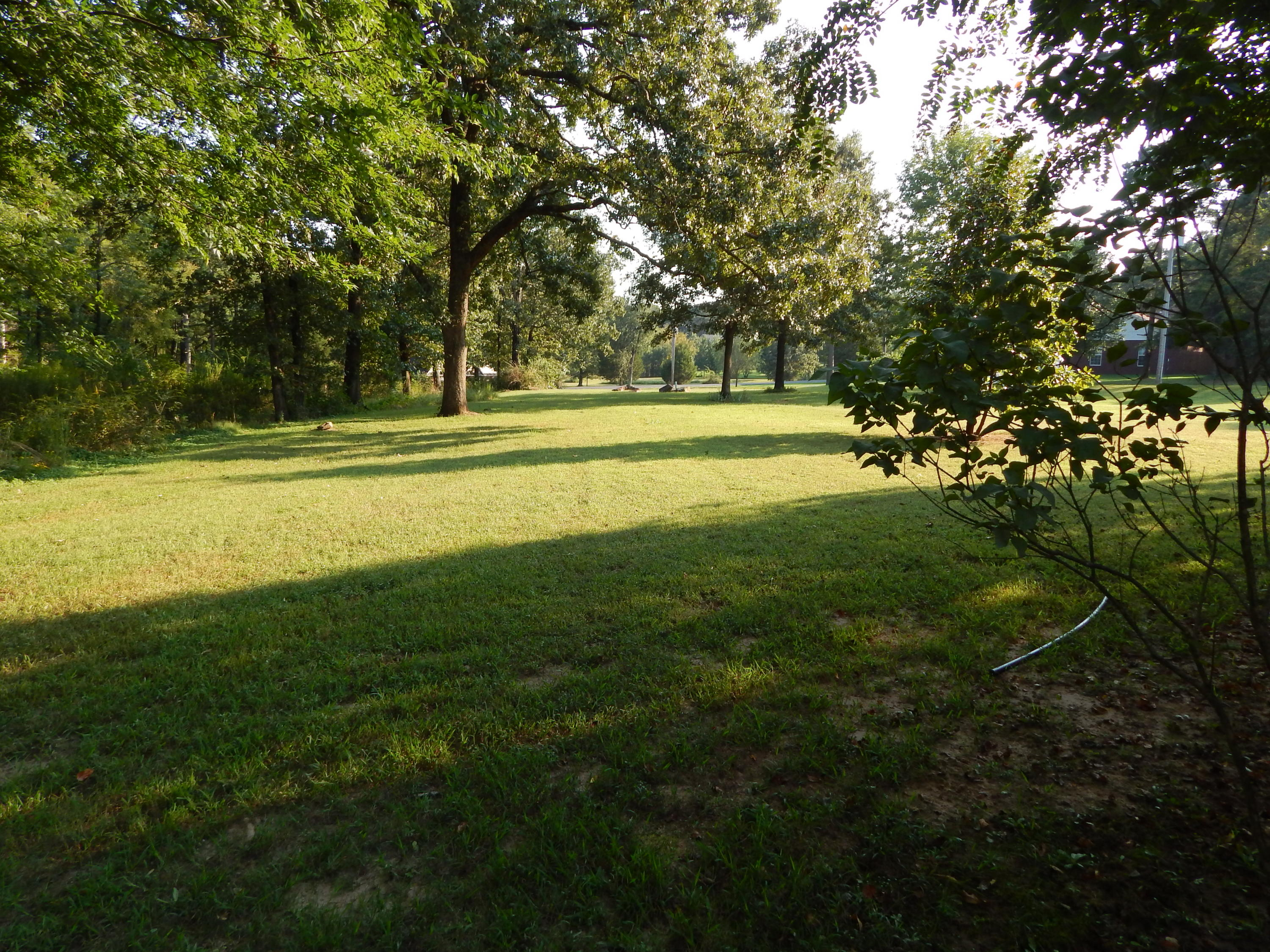 Large photo 43 of home for sale at 254 Park Road, Russellville, AR