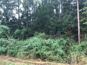 6.64 Acre +/- off CR 3390, Clarksville, AR 72830