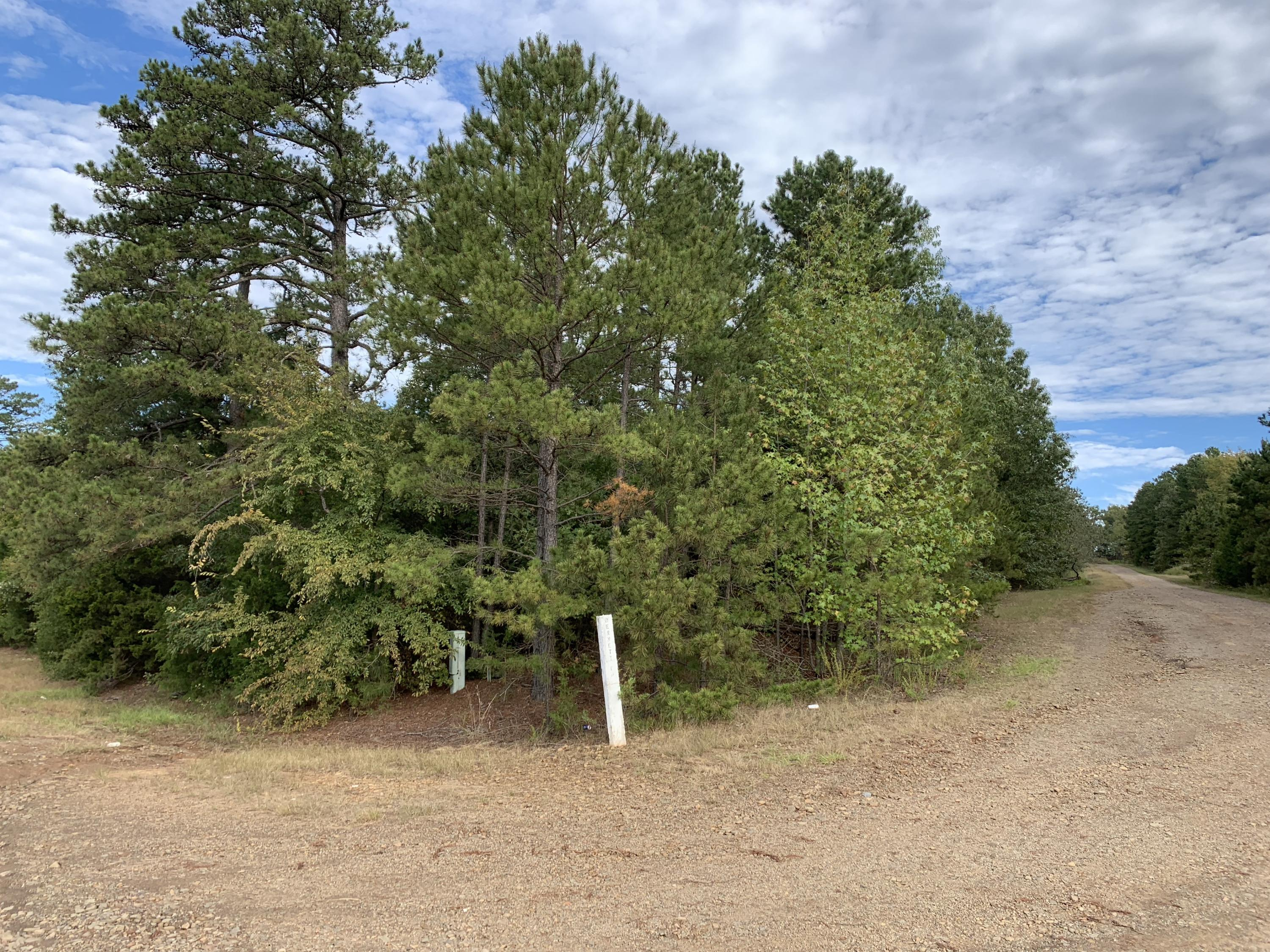 Large photo 1 of land for sale at  Bennett Orchard Estates , London, AR, listed by Coldwell Banker Premier Realty
