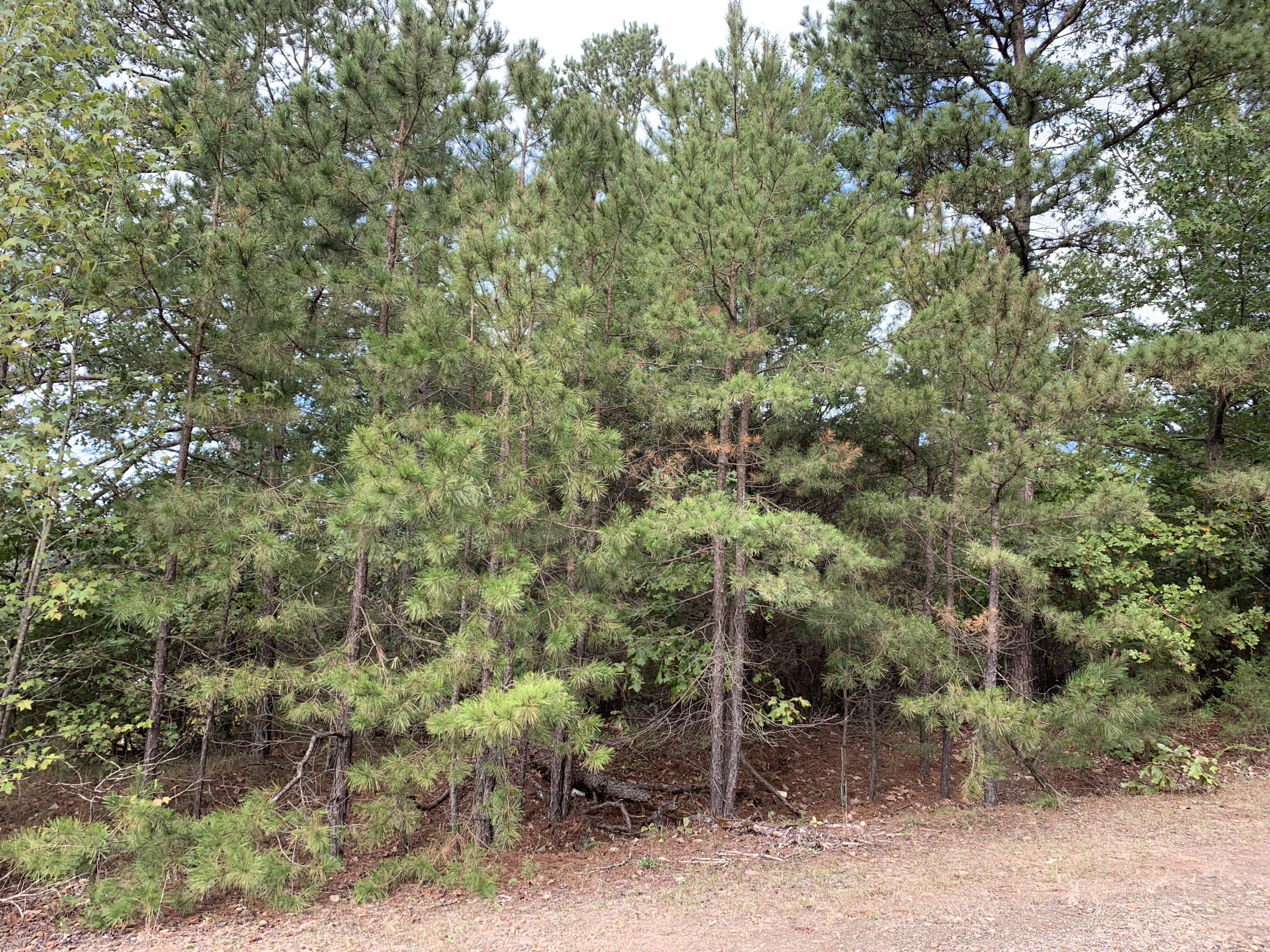Large photo 3 of land for sale at  Bennett Orchard Estates , London, AR, listed by Coldwell Banker Premier Realty