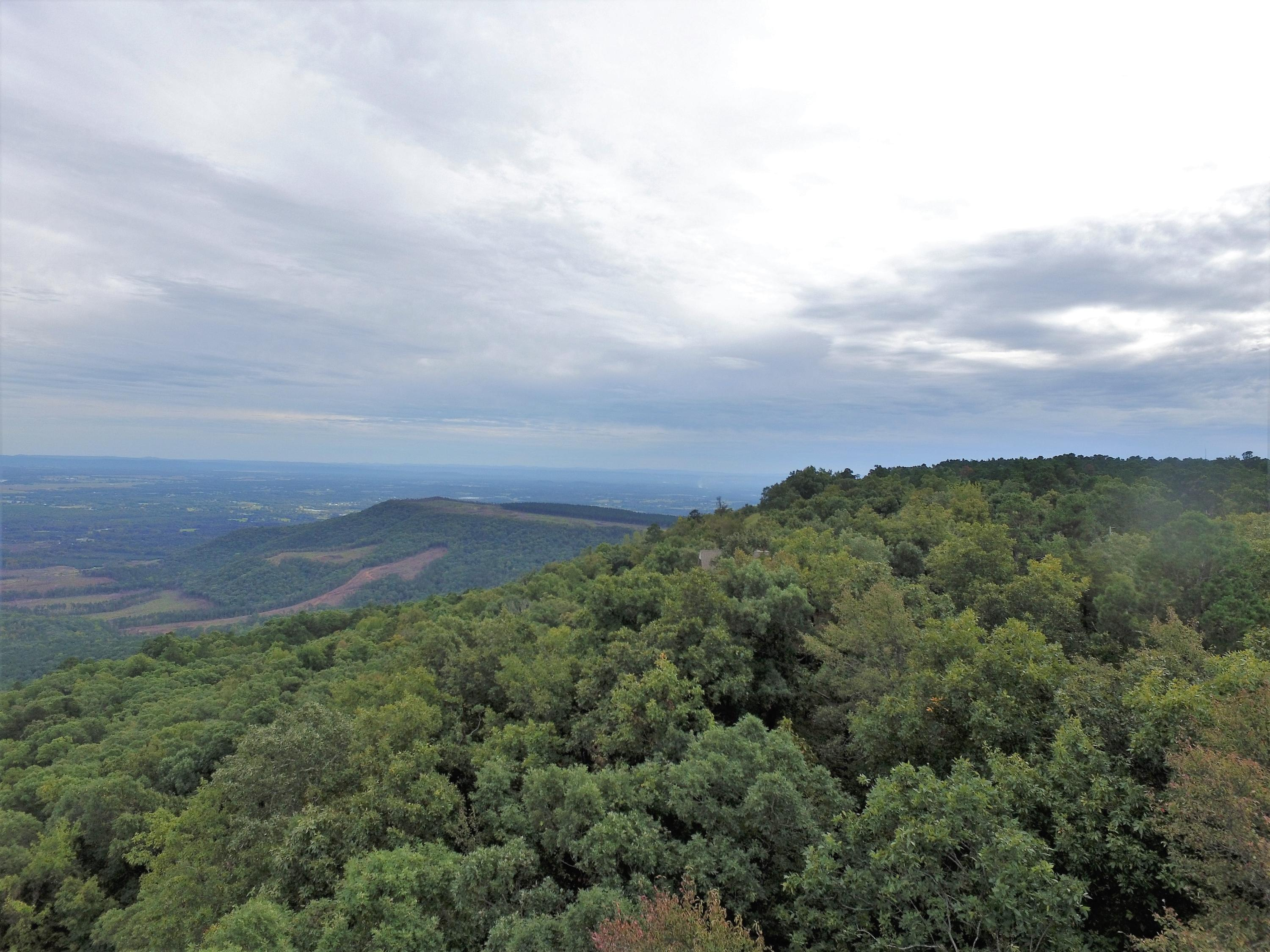 Large photo 5 of land for sale at  State 155 , Dardanelle, AR, listed by Moore And Co.