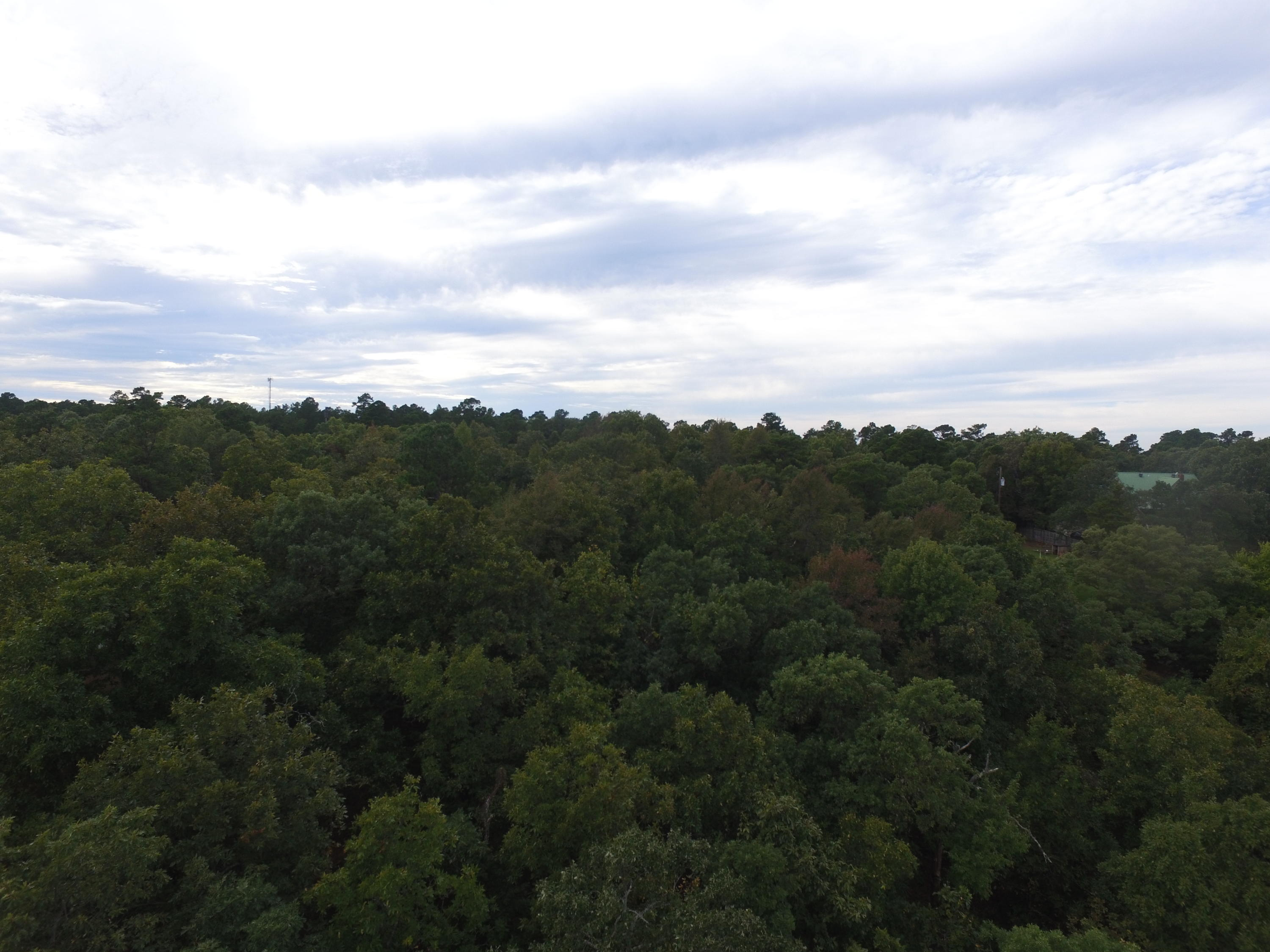 Large photo 6 of land for sale at  State 155 , Dardanelle, AR, listed by Moore And Co.