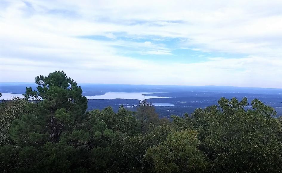 Large photo 1 of land for sale at  State 155 , Dardanelle, AR, listed by Moore And Co.