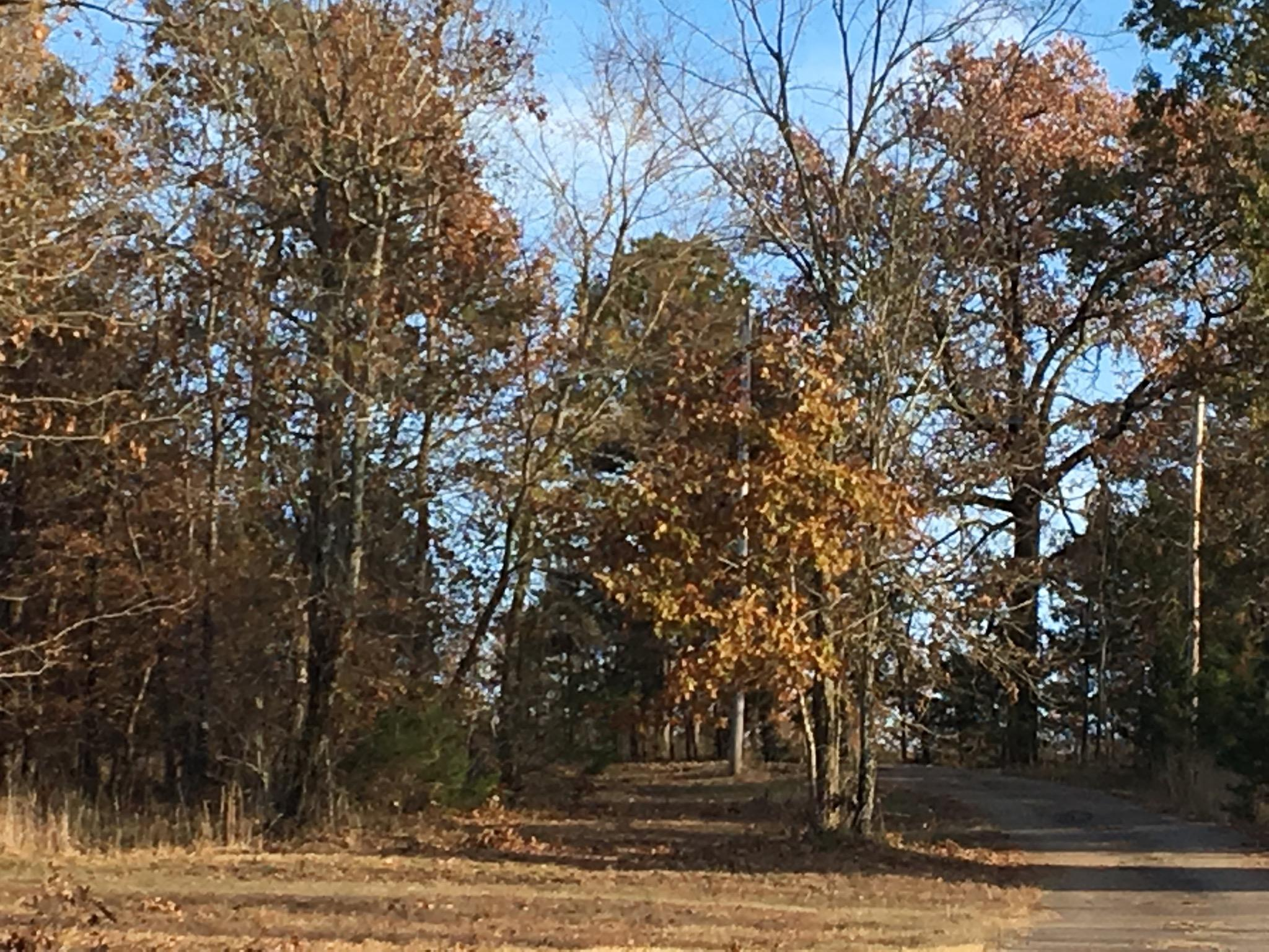 Large photo 32 of home for sale at 771 CR 3790 , Hagarville, AR