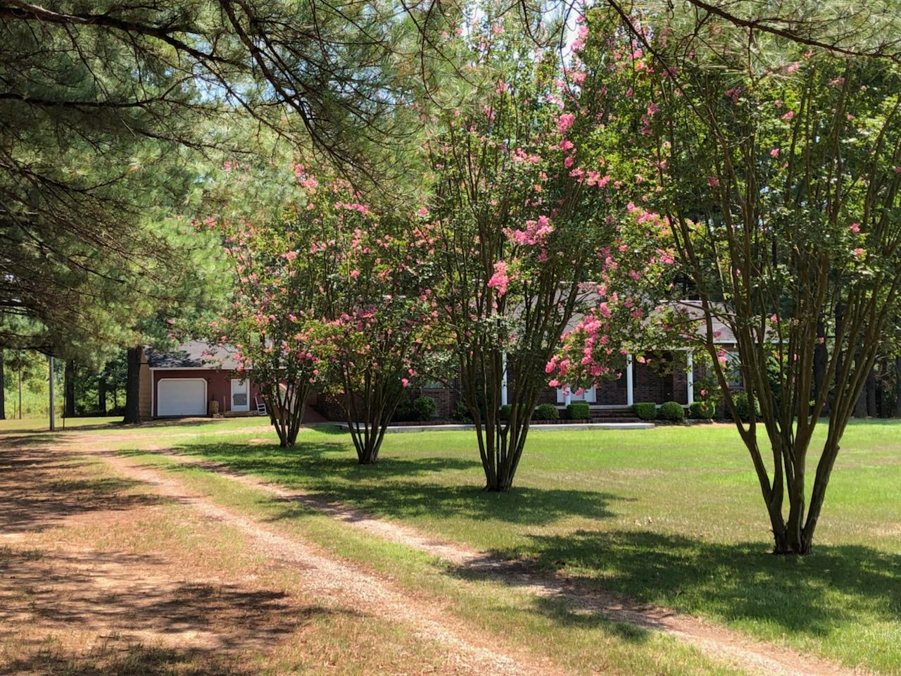 Large photo 3 of home for sale at 10182 Singing Pines Road, Danville, AR