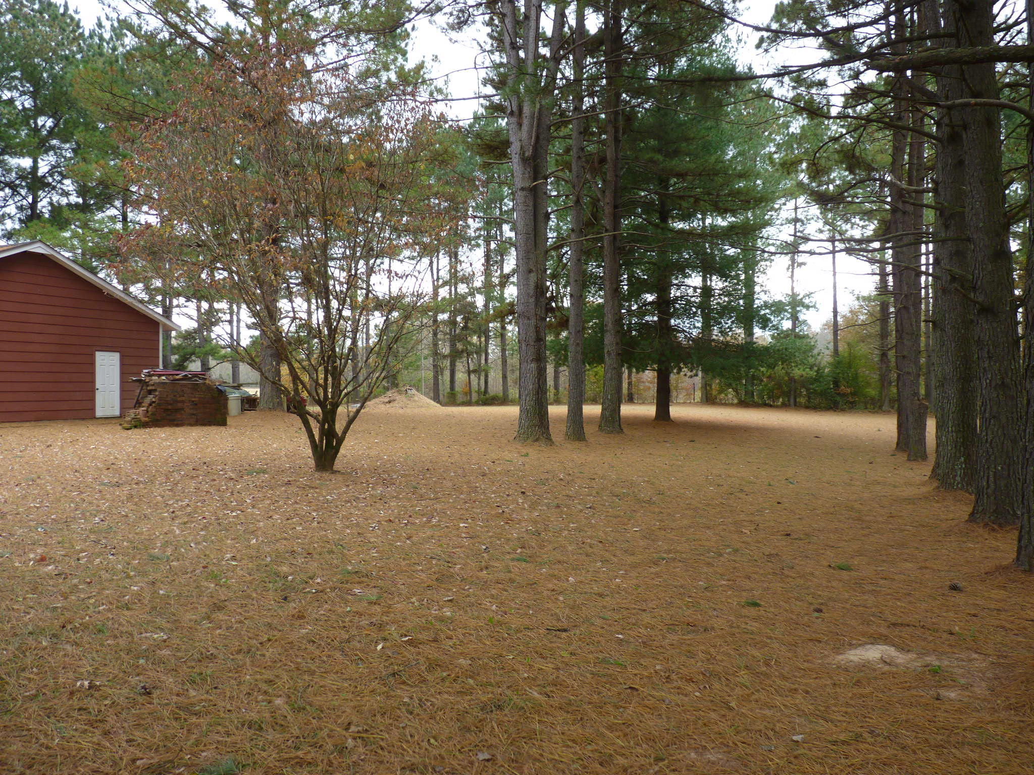 Large photo 8 of home for sale at 10182 Singing Pines Road, Danville, AR