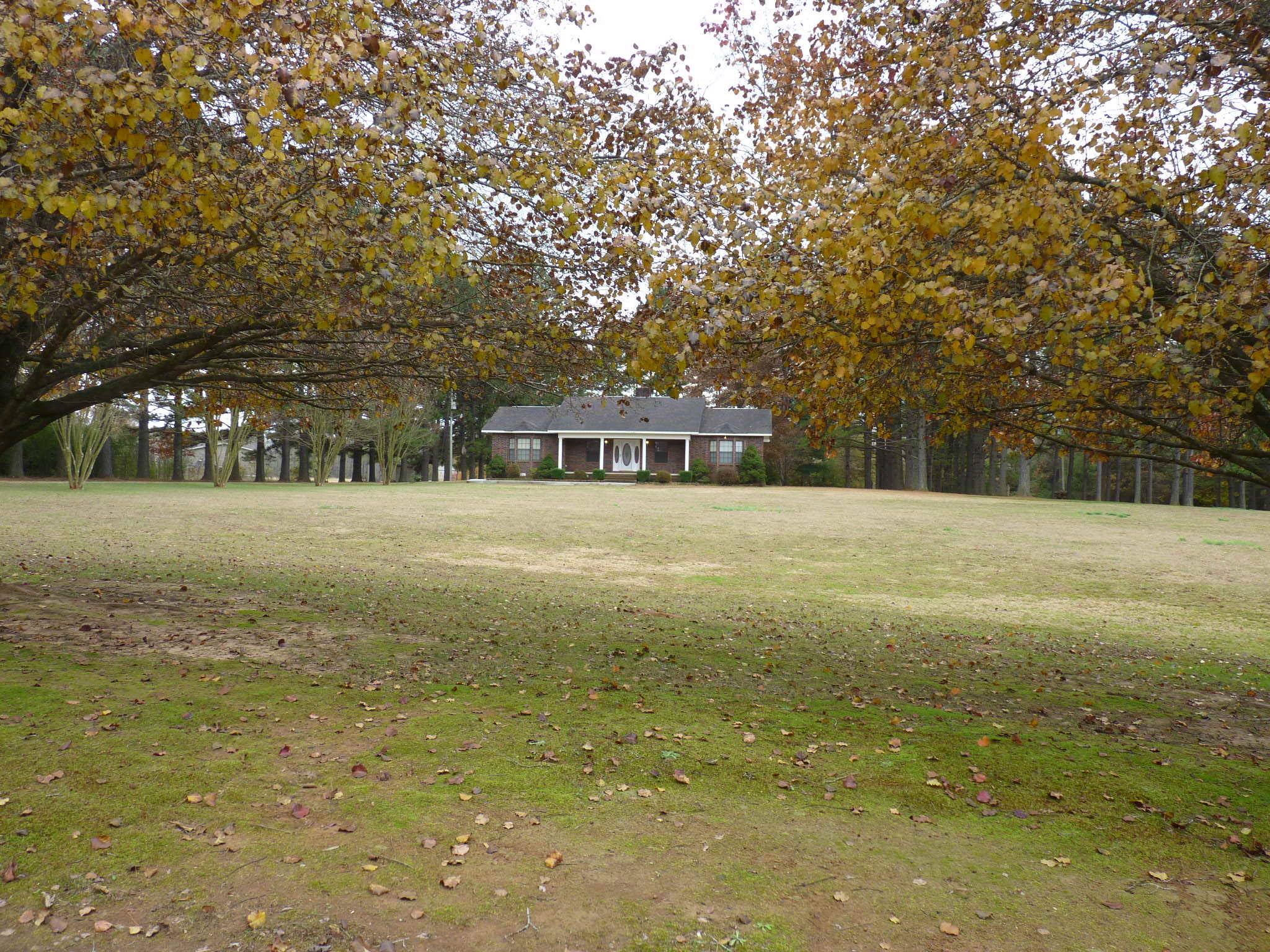 Large photo 4 of home for sale at 10182 Singing Pines Road, Danville, AR