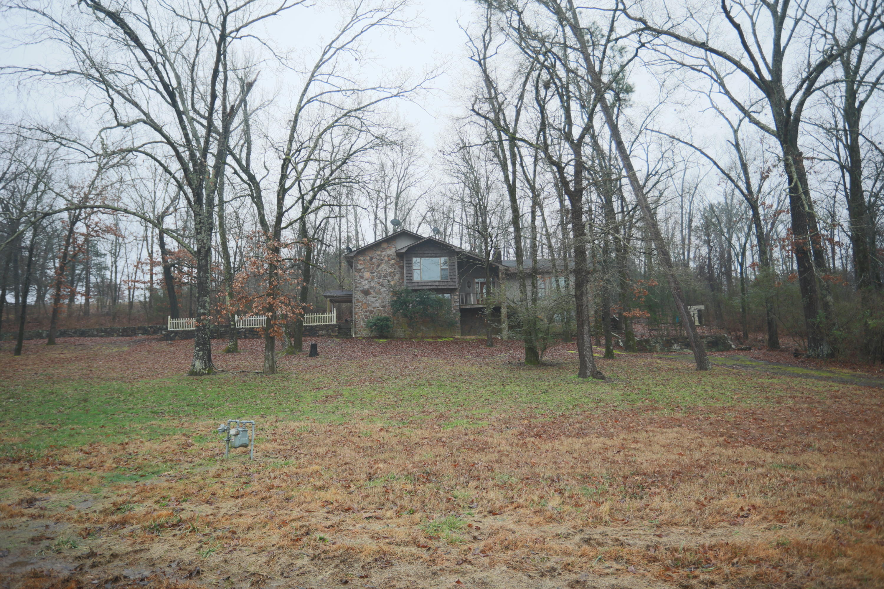 Large photo 7 of home for sale at 311 Terra Villa Road, Dover, AR