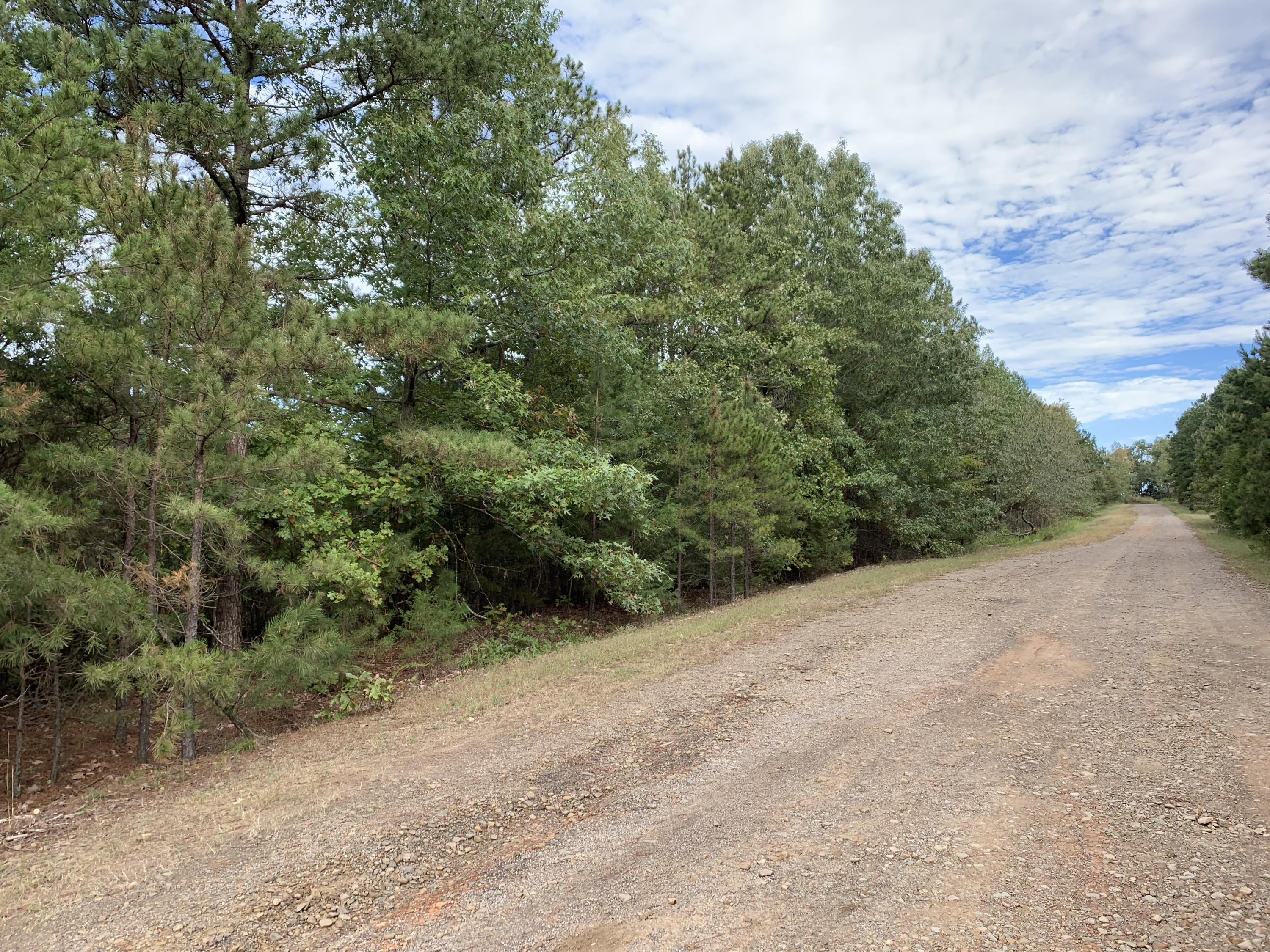 Large photo 5 of land for sale at  Bennett Orchard Estates Lots , London, AR, listed by Coldwell Banker Premier Realty