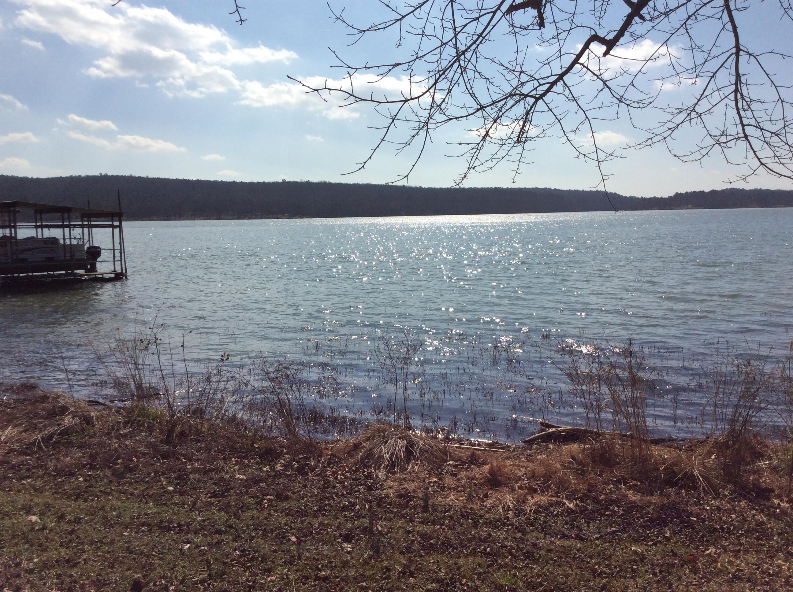 Large photo 66 of home for sale at 434 CR 2731 , London, AR