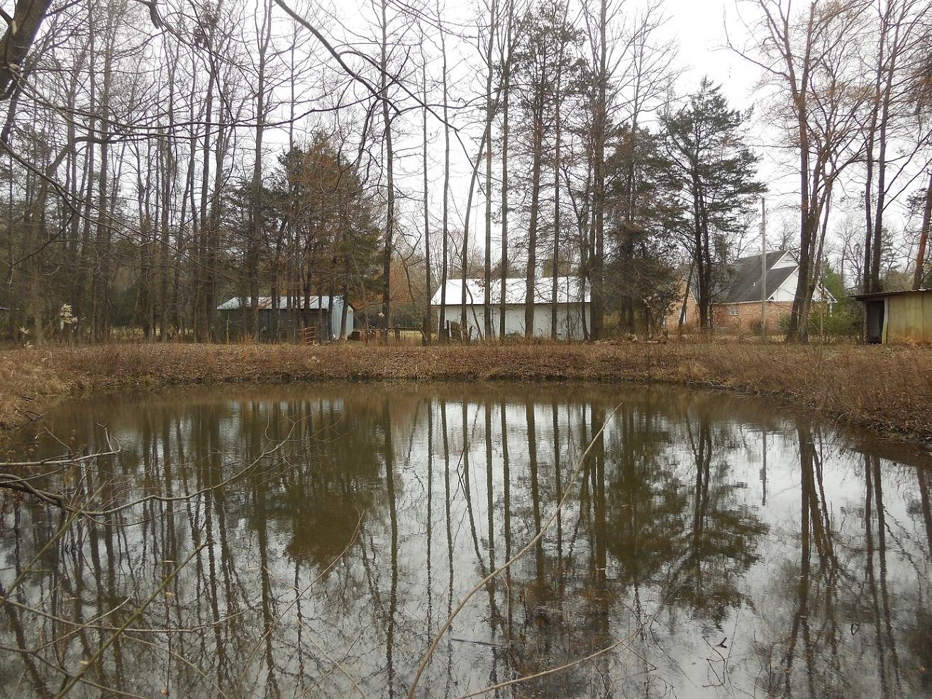 Large photo 20 of home for sale at 11878 Gum Springs Road, Dardanelle, AR