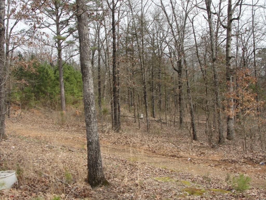 Large photo 2 of land for sale at 502 PR 3012 , Coal Hill, AR, listed by Stall & Associates Real Estate