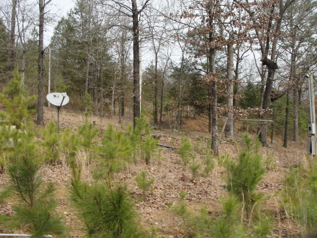 Large photo 3 of land for sale at 502 PR 3012 , Coal Hill, AR, listed by Stall & Associates Real Estate