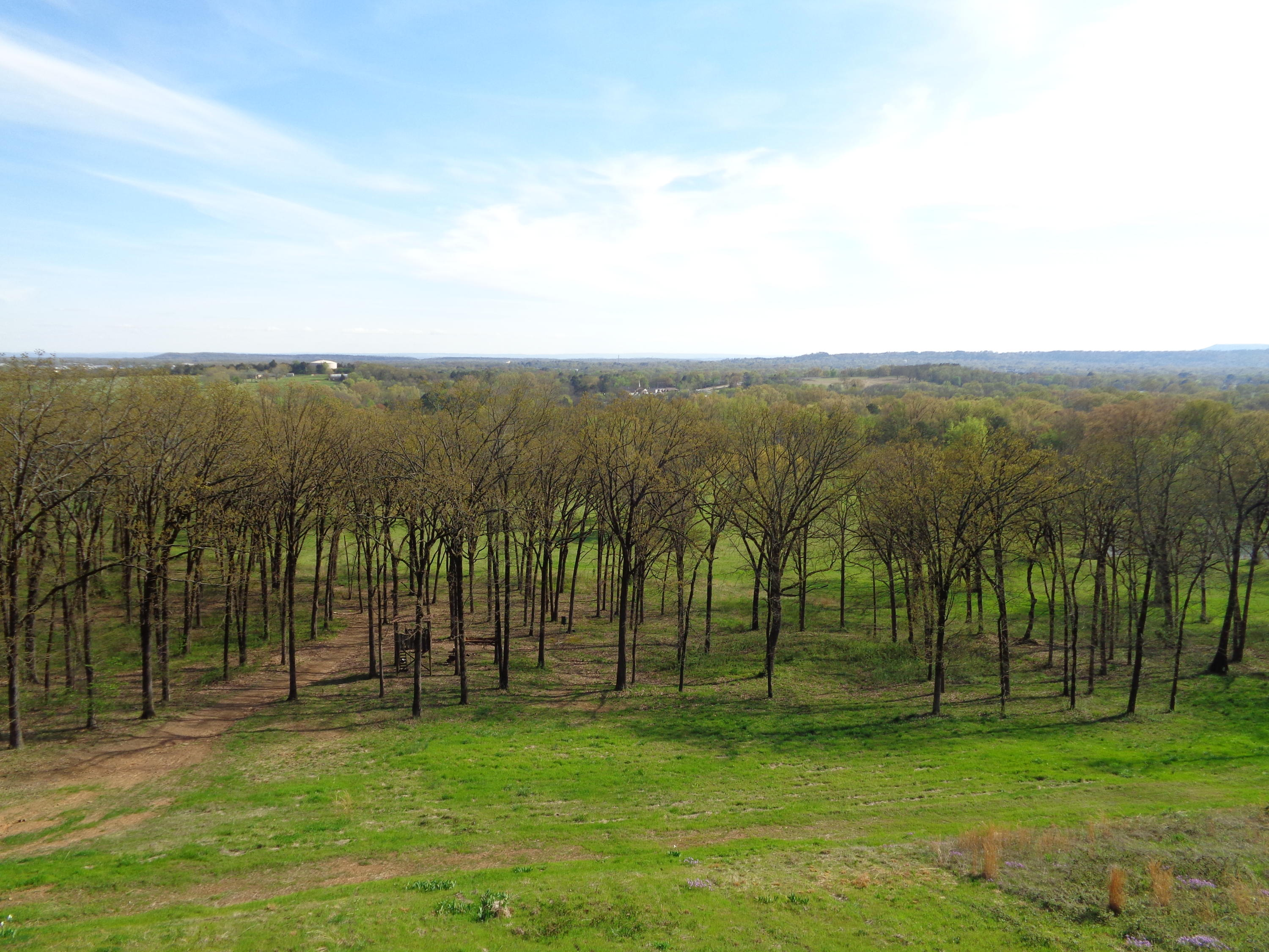 Large photo 46 of home for sale at 833 Sparksford Drive, Russellville, AR