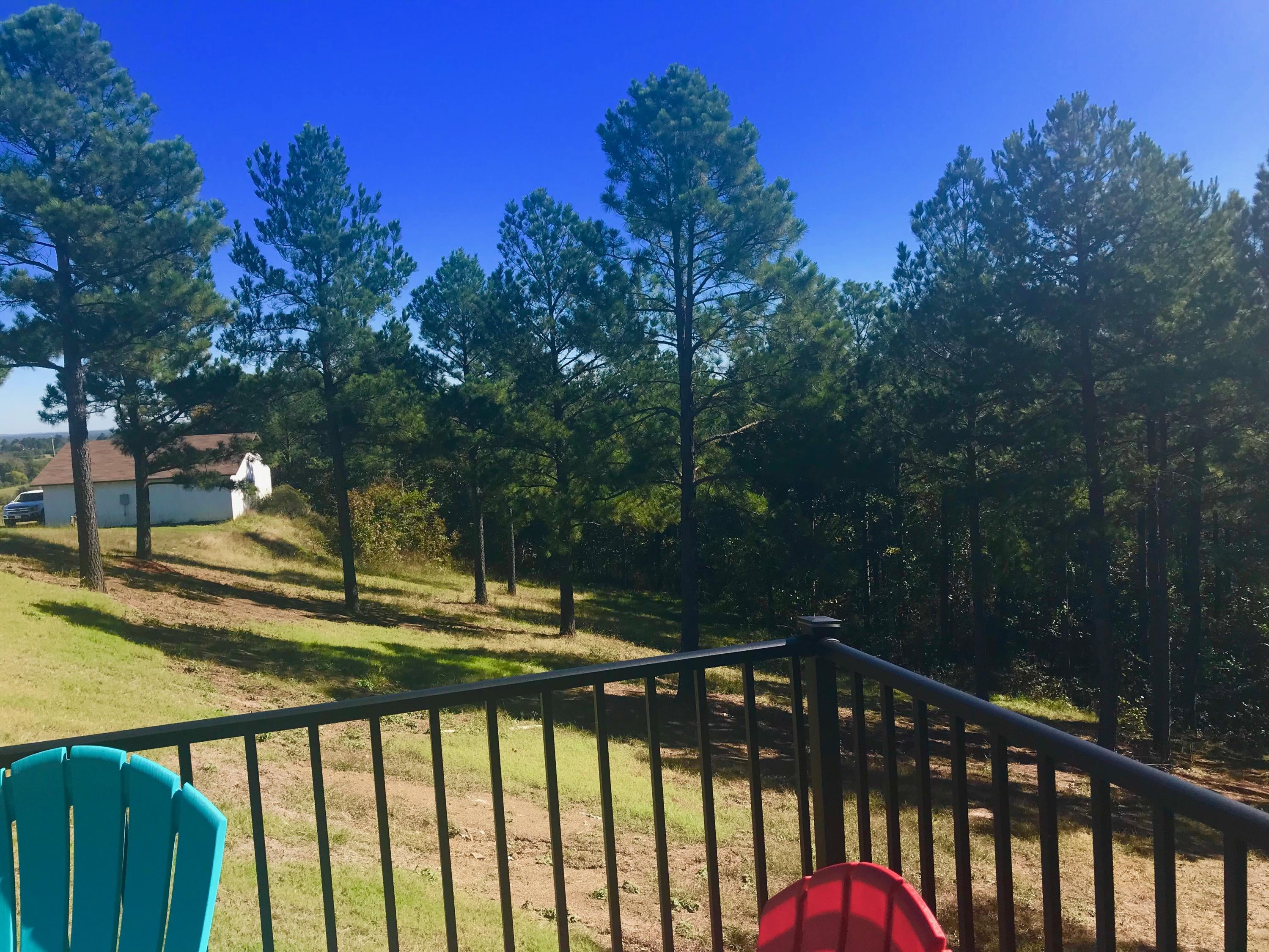 Large photo 34 of home for sale at 1010 AR-28 , Ola, AR
