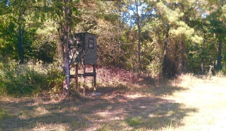 Large photo 55 of home for sale at 1010 AR-28 , Ola, AR