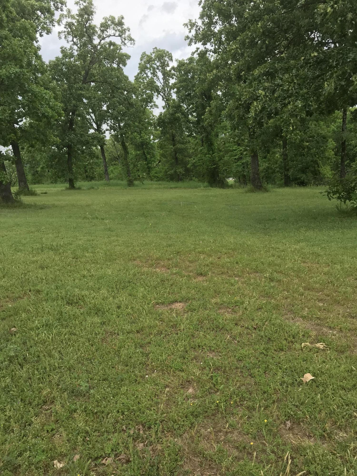 Large photo 38 of home for sale at 12546 Hwy 22 , Subiaco, AR