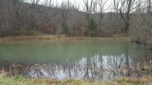 Large photo 53 of home for sale at 4685 CR 5099 , Other, AR