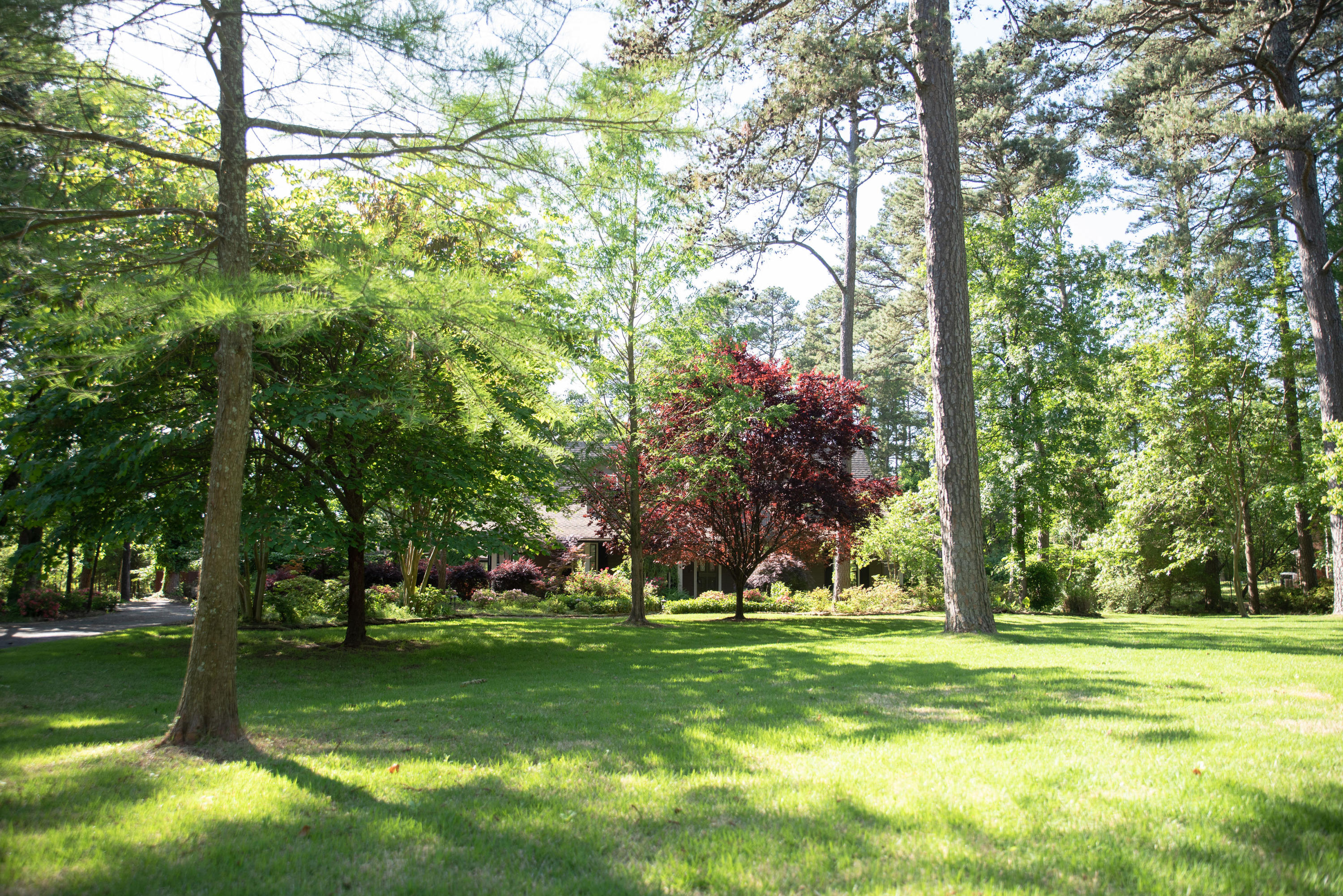 Large photo 41 of home for sale at 1414 Lands End N , Russellville, AR