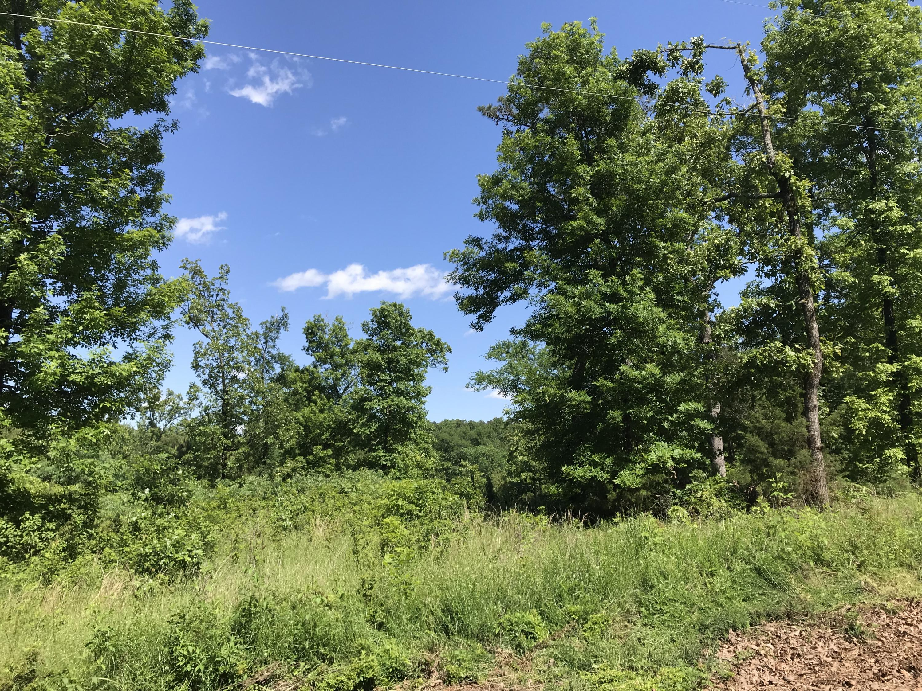Large photo 1 of land for sale at  Cloverleaf Loop , Dardanelle, AR, listed by The Realty Place, Inc.