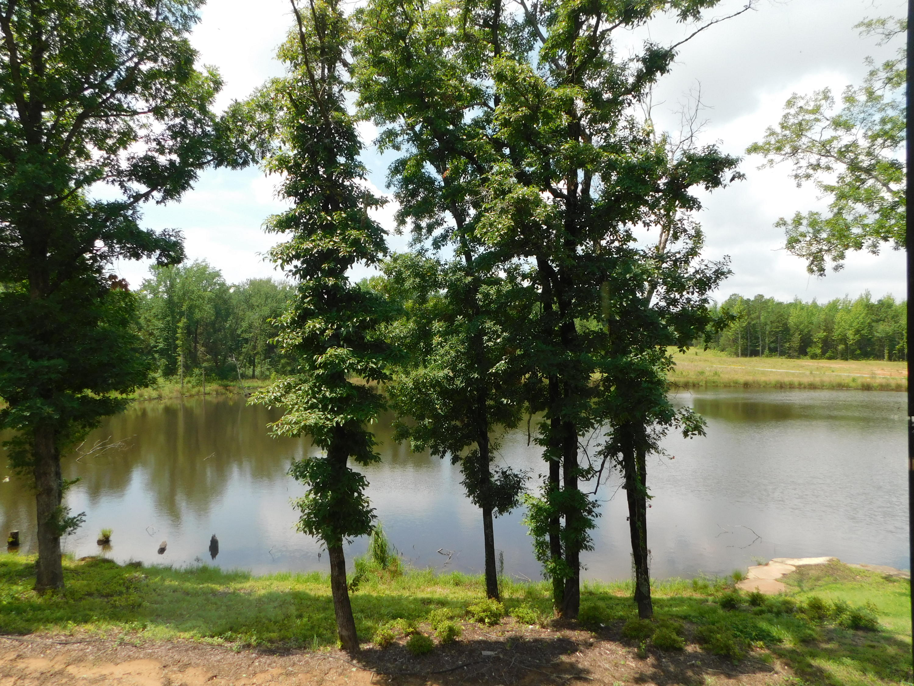 Large photo 51 of home for sale at 2058 Highway 818 , Clarksville, AR