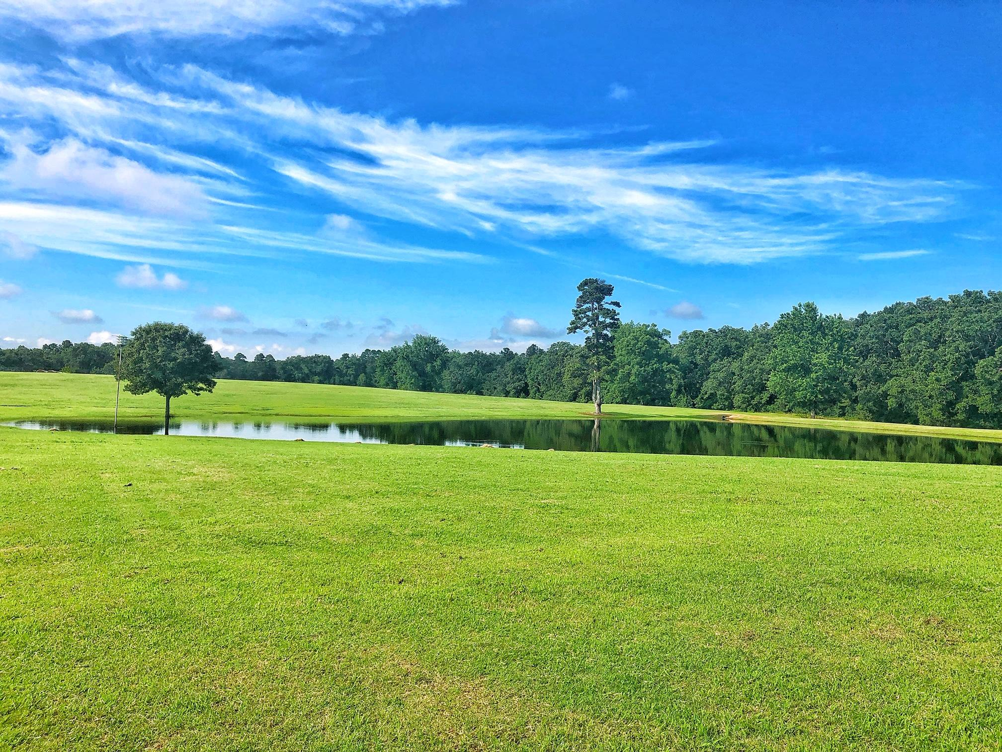 Large photo 51 of home for sale at 22432 AR-307 , Belleville, AR
