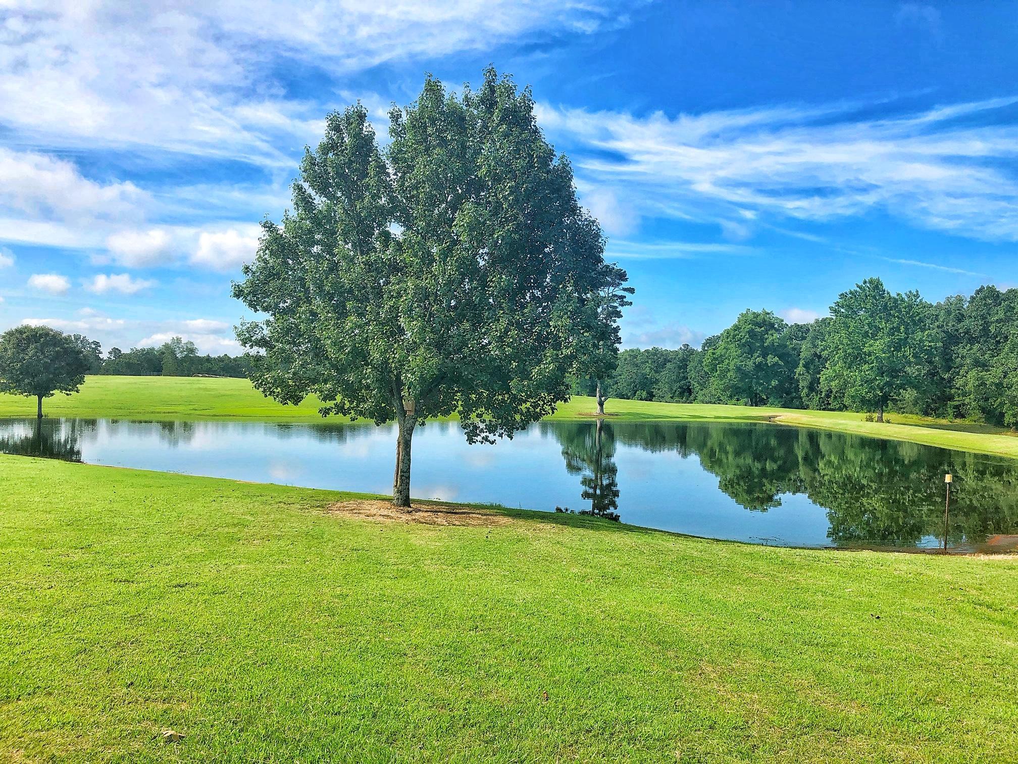 Large photo 39 of Belleville home for sale at 22432 AR-307 , Belleville, AR