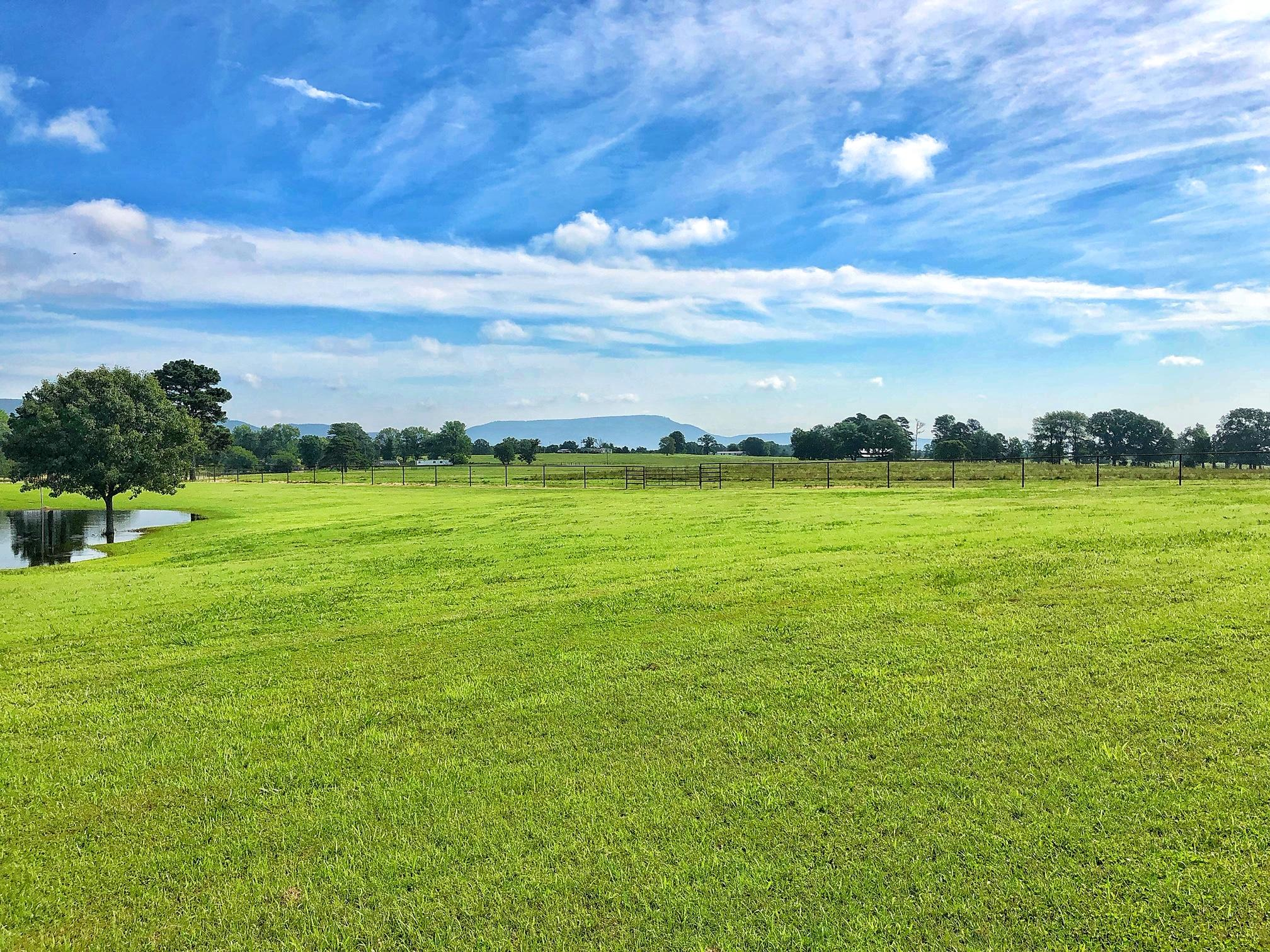 Large photo 55 of home for sale at 22432 AR-307 , Belleville, AR