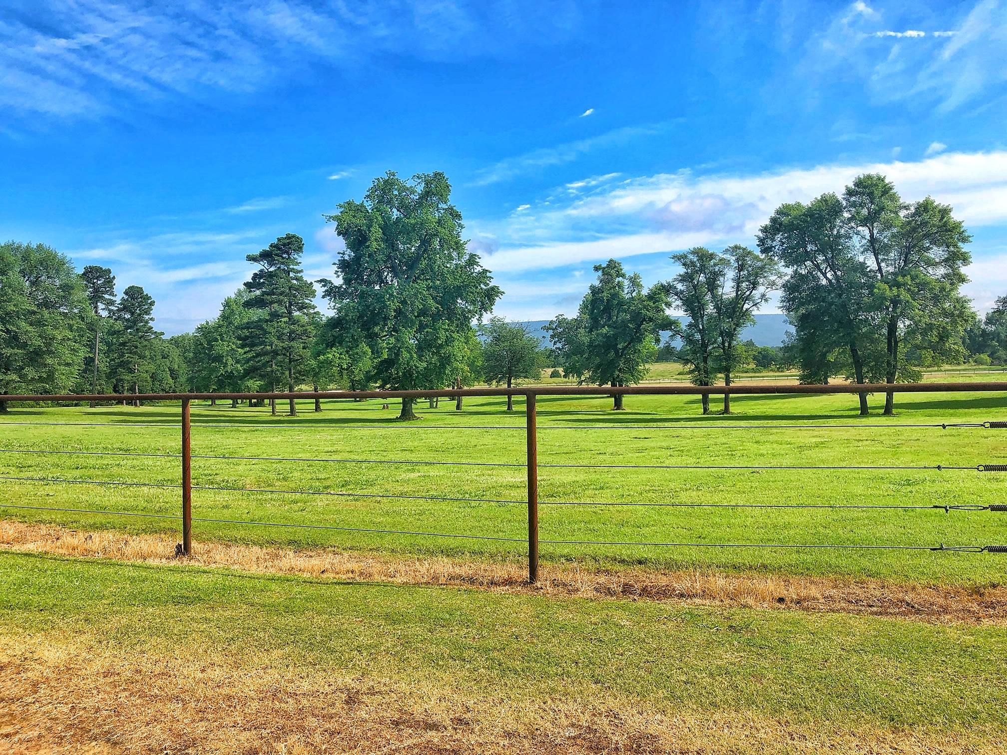 Large photo 45 of Belleville home for sale at 22432 AR-307 , Belleville, AR