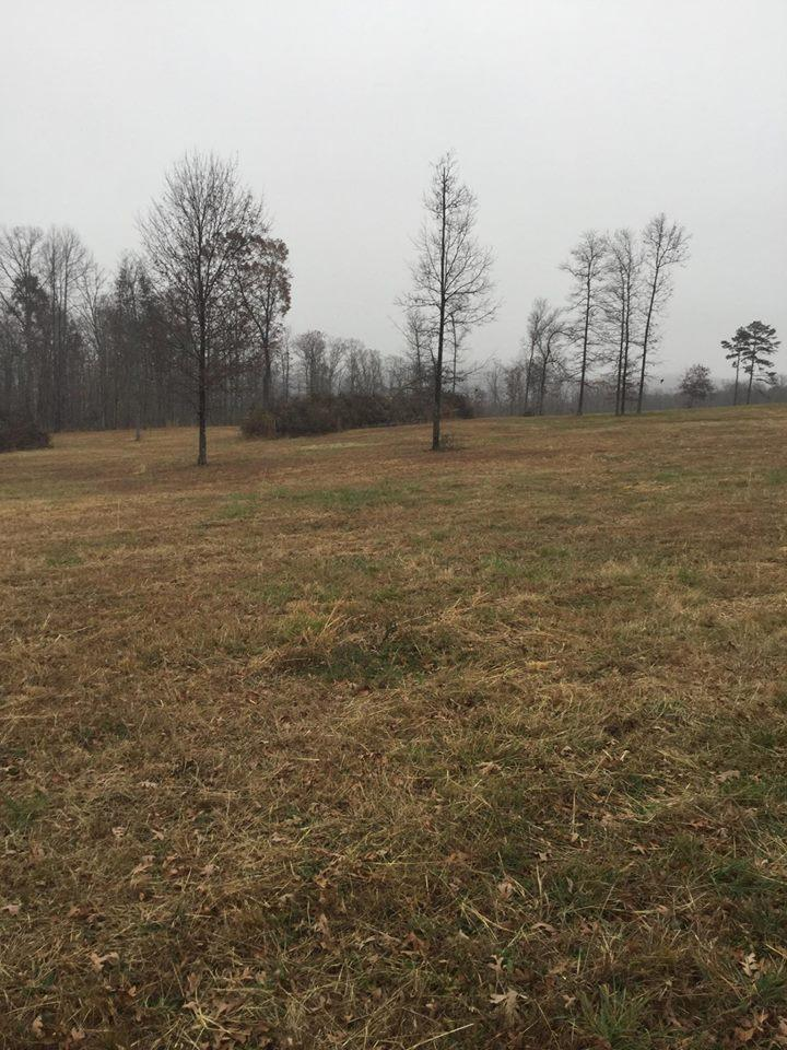Large photo 70 of home for sale at 2410 Dabney Road, Jerusalem, AR