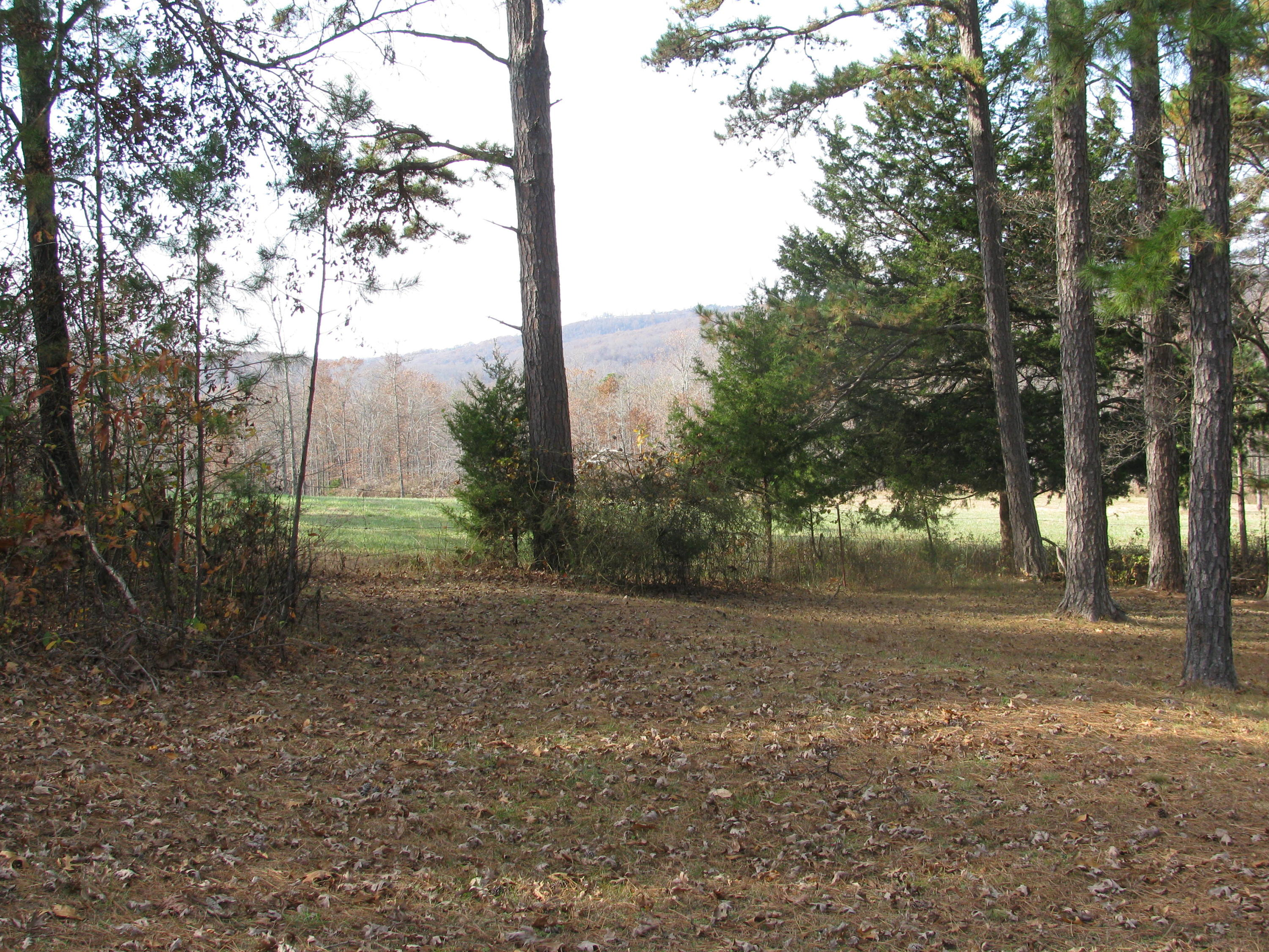 Large photo 20 of home for sale at 2410 Dabney Road, Jerusalem, AR