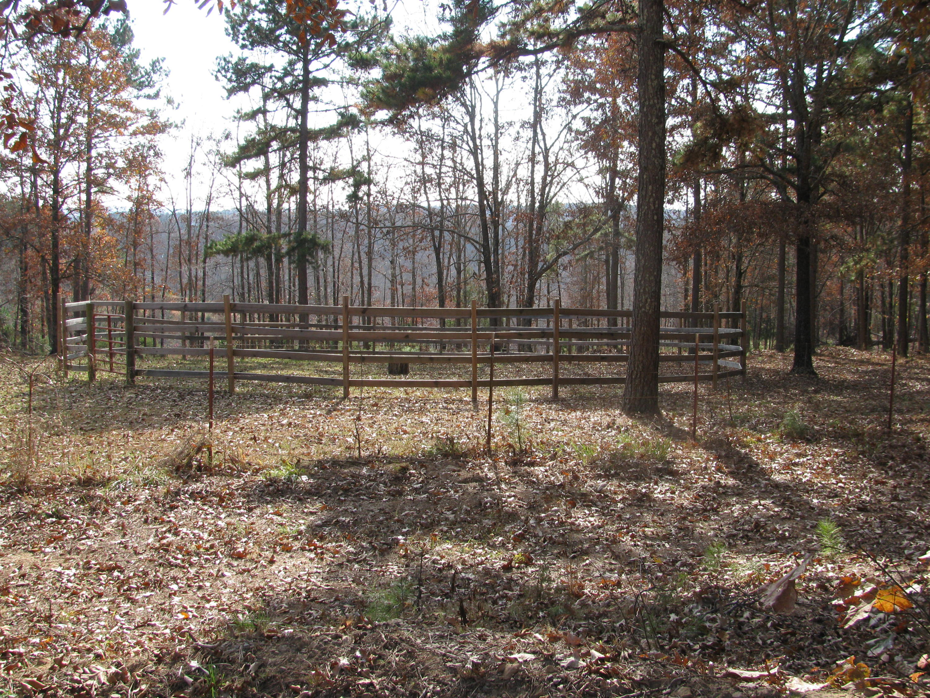 Large photo 60 of home for sale at 2410 Dabney Road, Jerusalem, AR