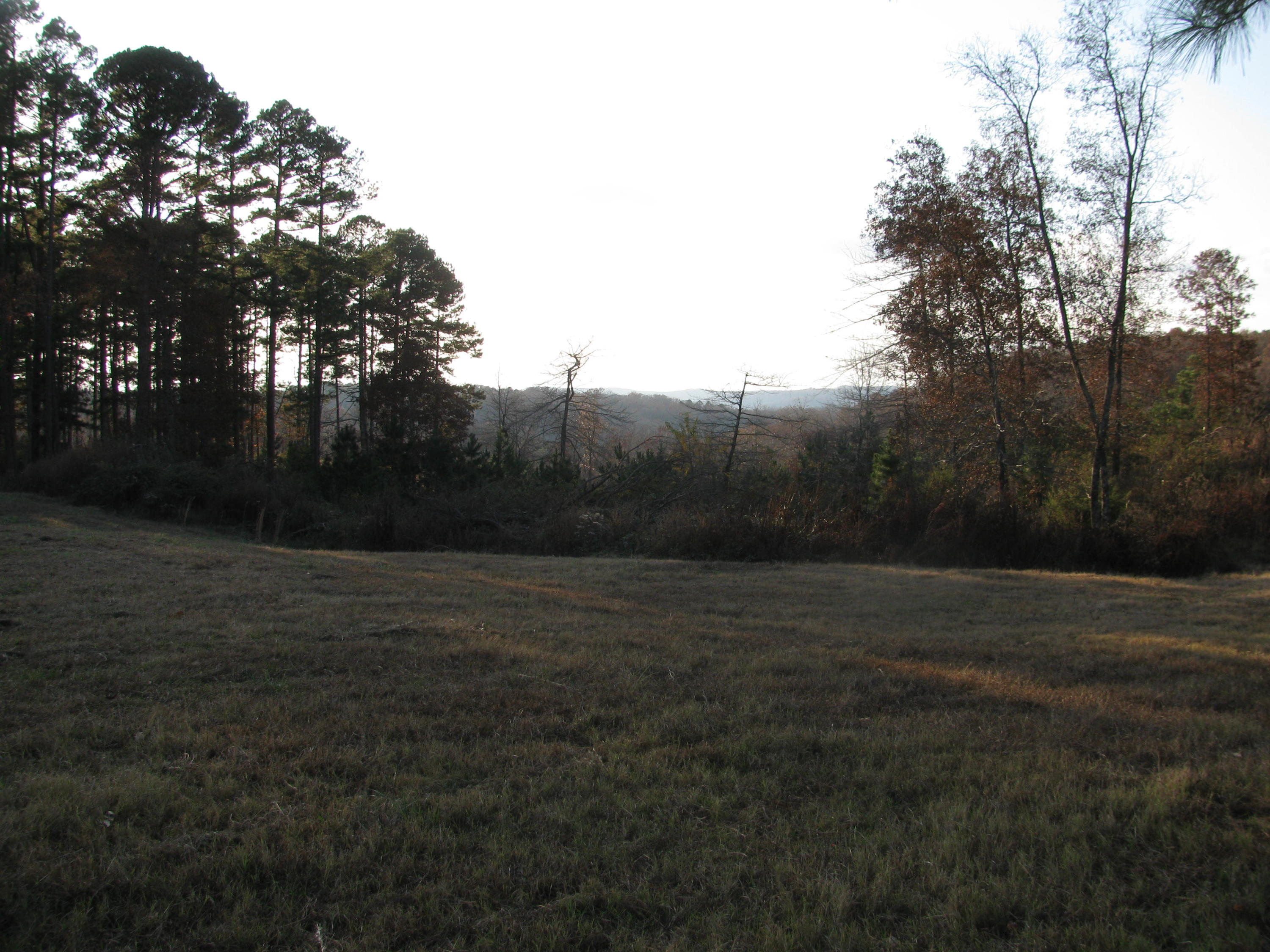 Large photo 77 of home for sale at 2410 Dabney Road, Jerusalem, AR