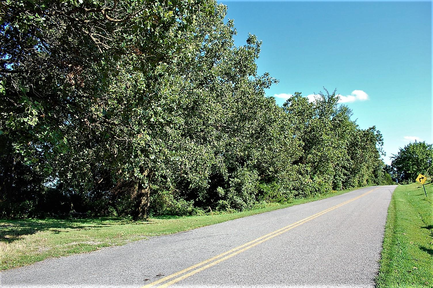 Large photo 32 of home for sale at 3975 Hudson Road, Russellville, AR