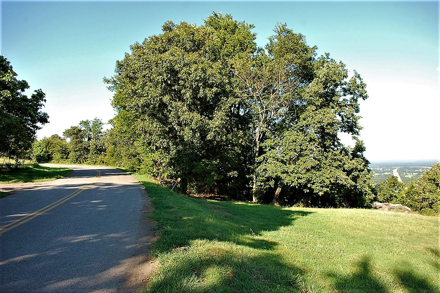 Large photo 51 of home for sale at 3975 Hudson Road, Russellville, AR
