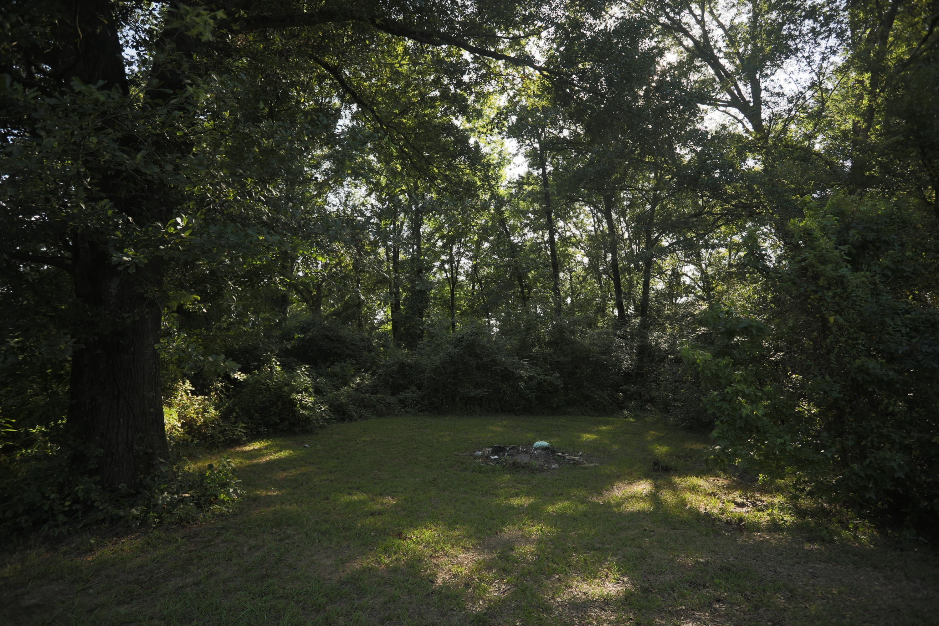 Large photo 54 of home for sale at 15139 N State Hwy 28 , Dardanelle, AR