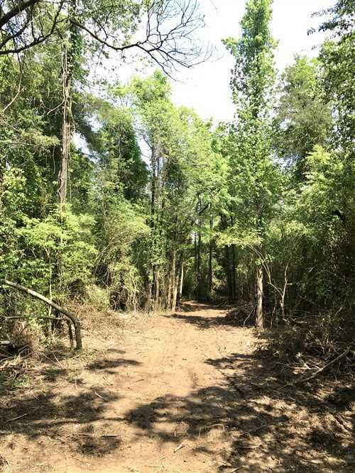 Large photo 14 of land for sale at 0 State Highway 155 , Dardanelle, AR, listed by Coldwell Banker James R. Ford