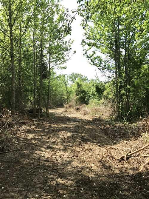 Large photo 12 of land for sale at 0 State Highway 155 , Dardanelle, AR, listed by Coldwell Banker James R. Ford