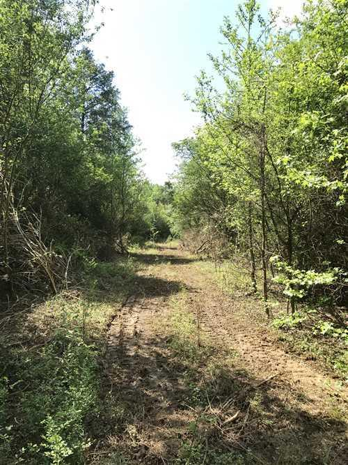 Large photo 13 of land for sale at 0 State Highway 155 , Dardanelle, AR, listed by Coldwell Banker James R. Ford