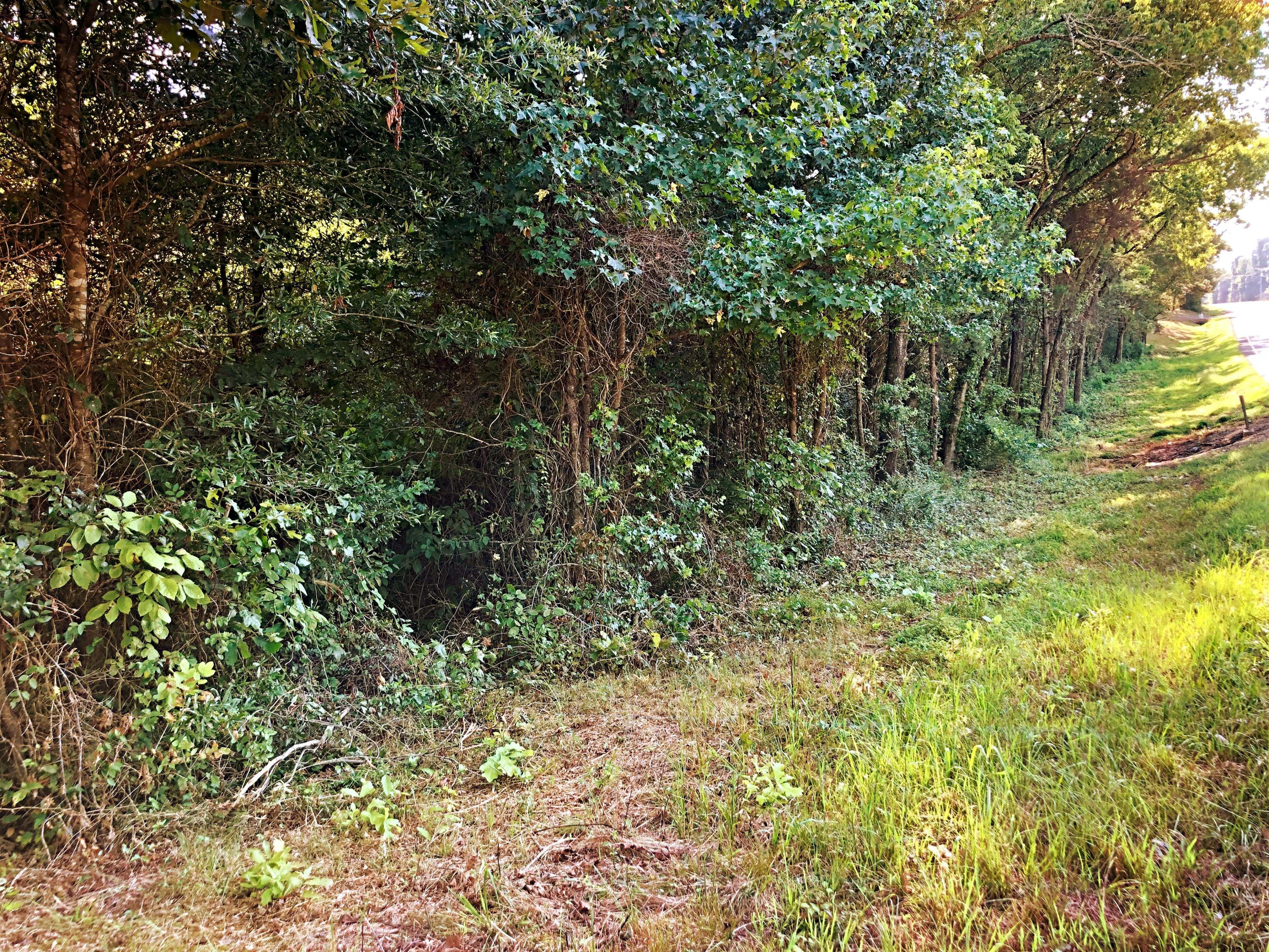 Large photo 9 of land for sale at 0 State Highway 155 , Dardanelle, AR, listed by Coldwell Banker James R. Ford