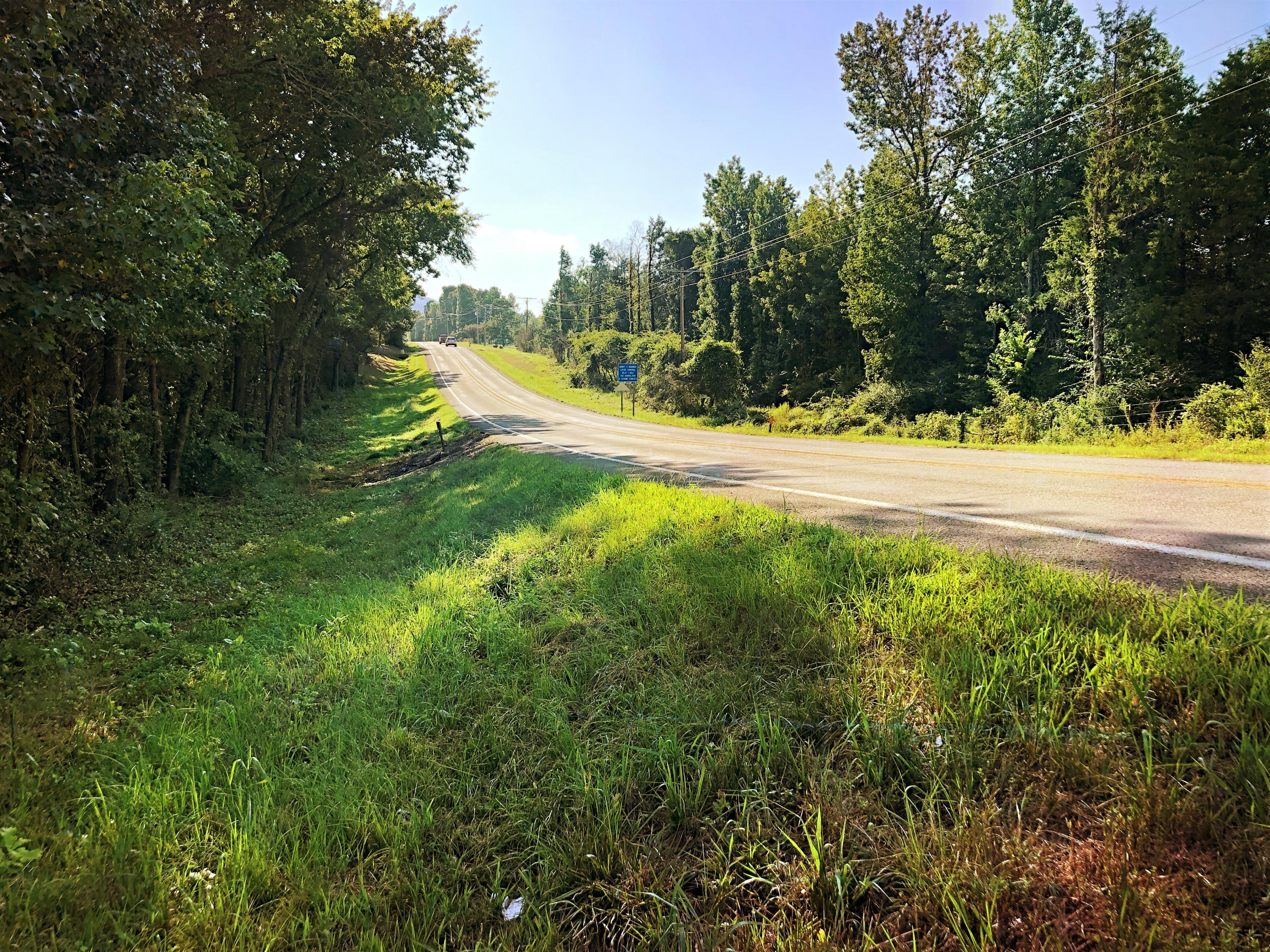 Large photo 11 of land for sale at 0 State Highway 155 , Dardanelle, AR, listed by Coldwell Banker James R. Ford