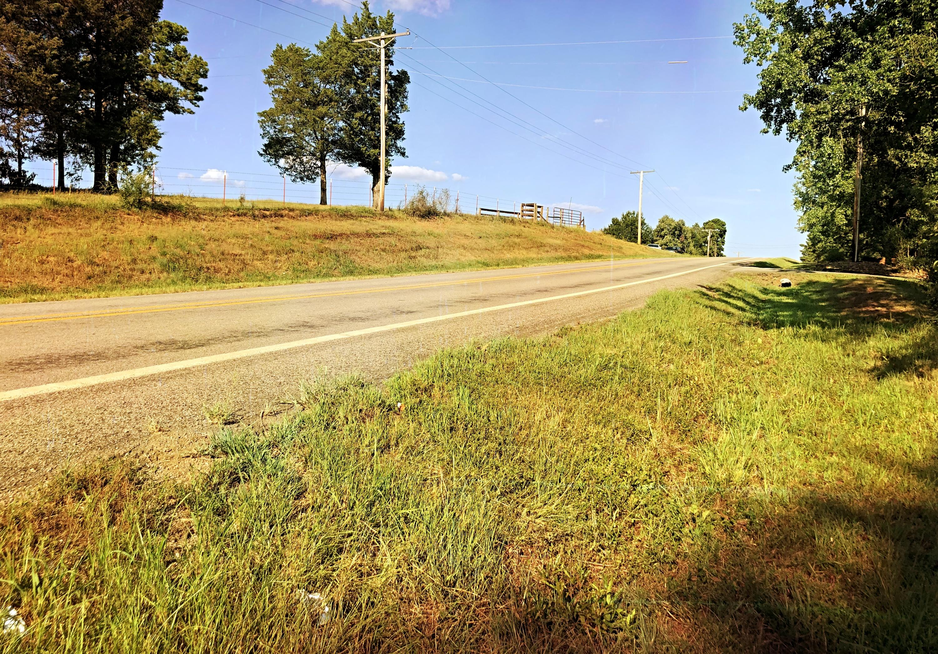 Large photo 10 of land for sale at 0 State Highway 155 , Dardanelle, AR, listed by Coldwell Banker James R. Ford